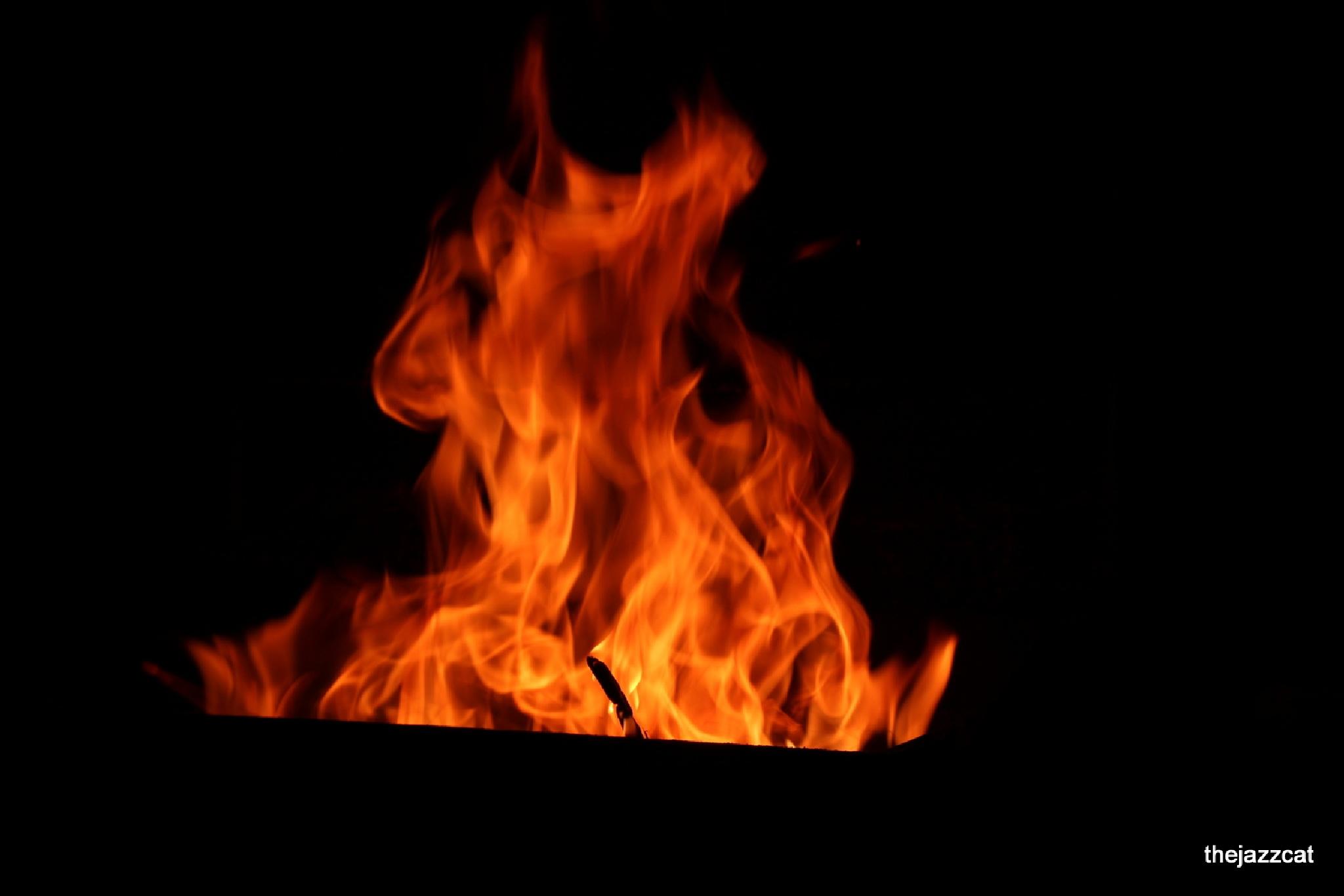 fire 3 by P. Michael Fadyk