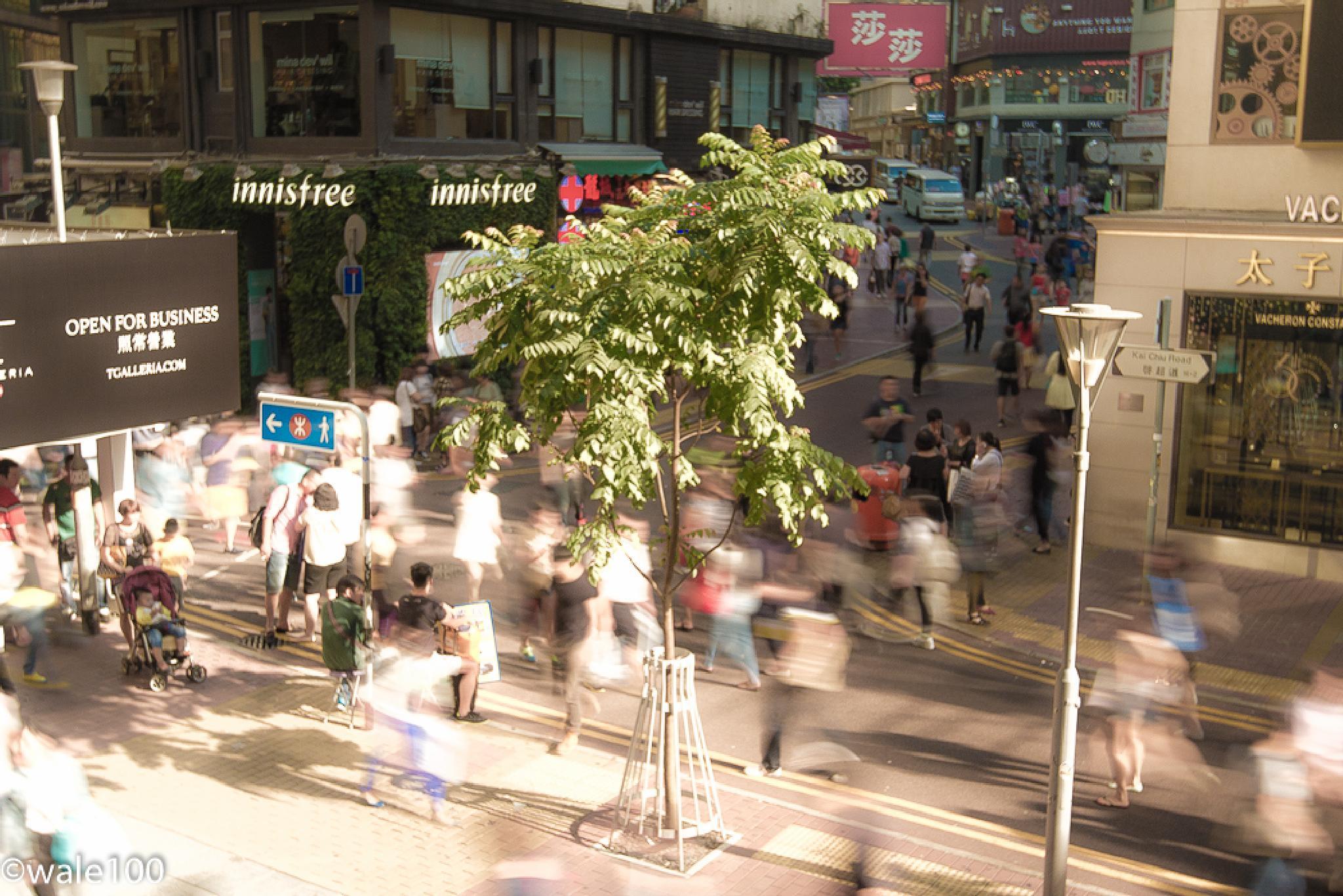 People watching in Hong Kong by wale