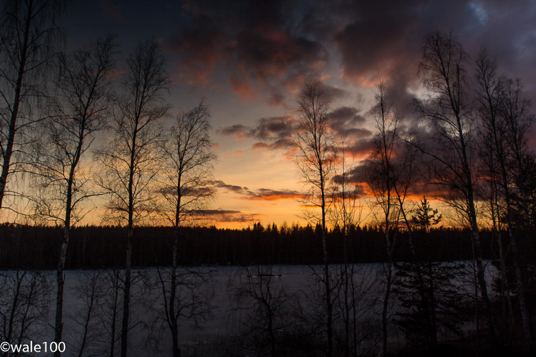 A Finnish Sunset by wale