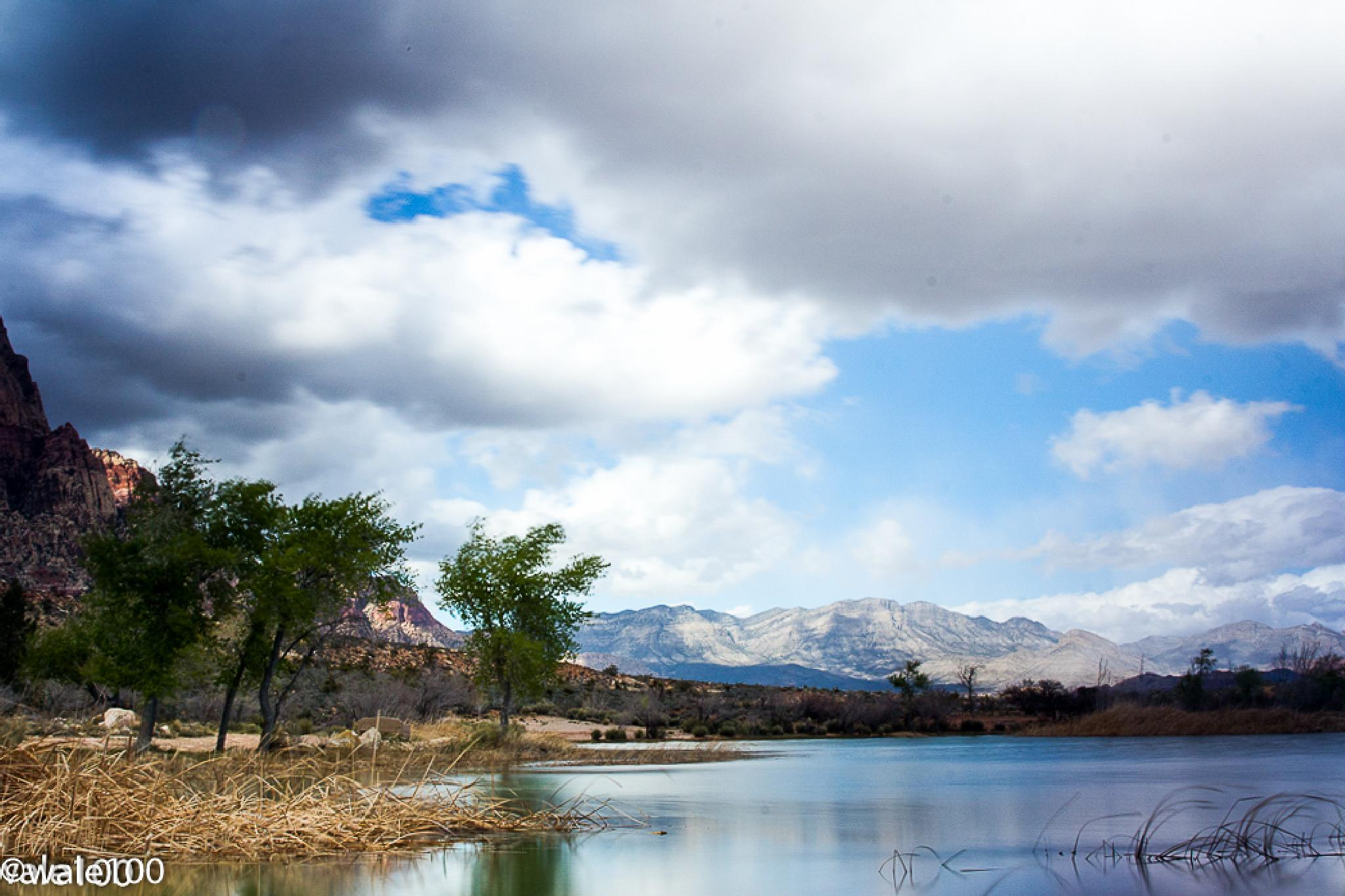 Lake in Red Rock Canyon by wale