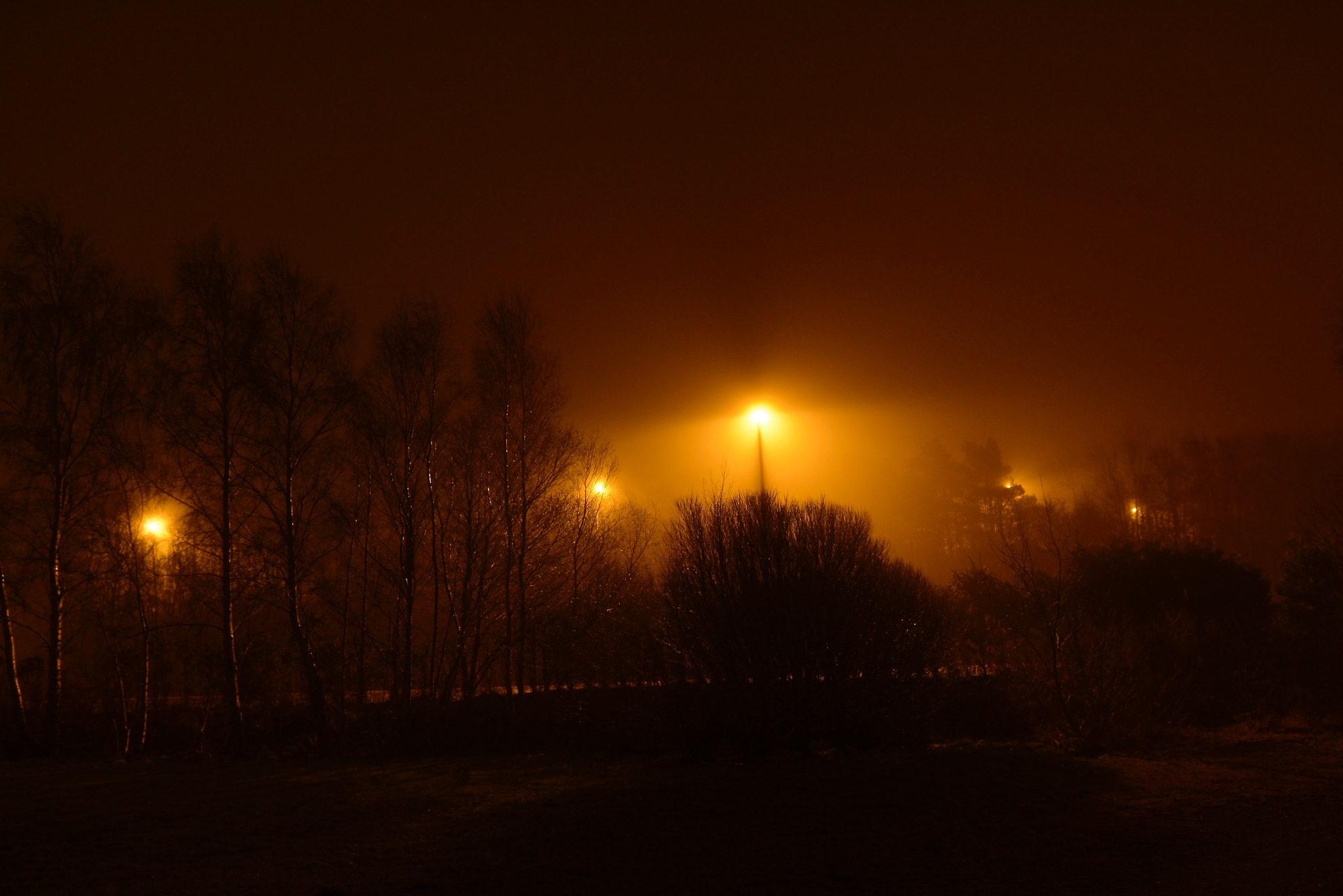 Misty night by Micke