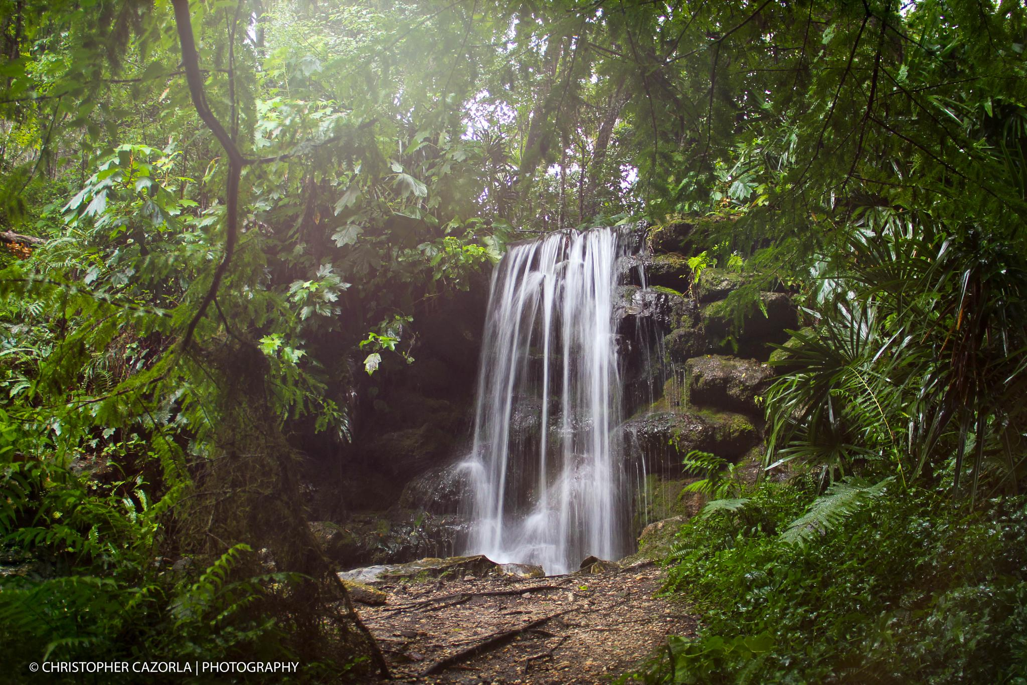 Rainbow Springs Fl, by CLCPhotography