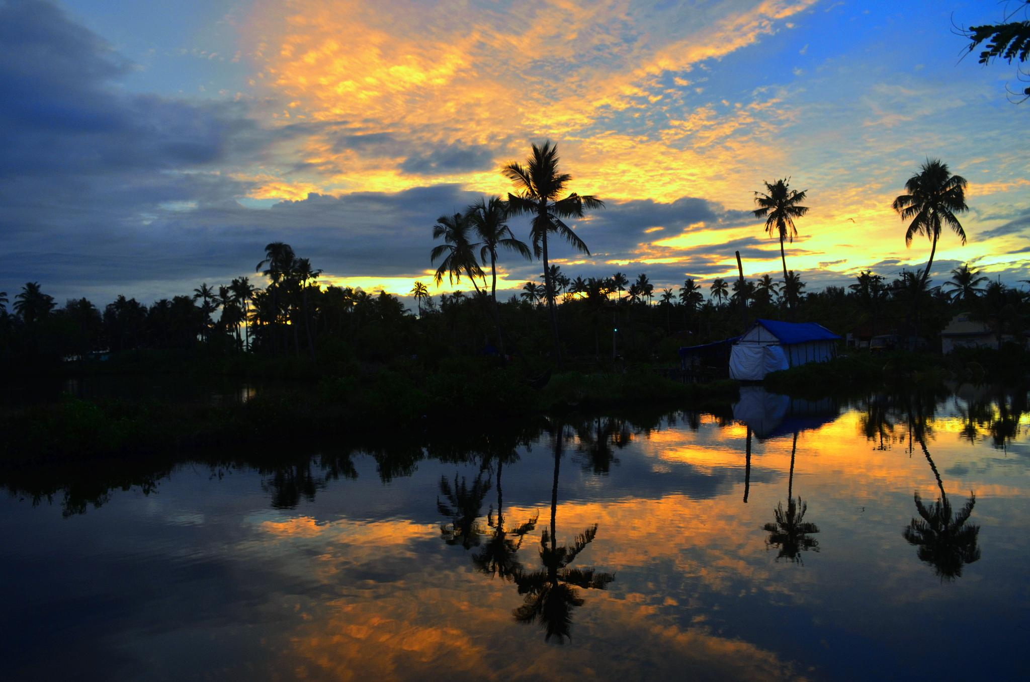 backwaters by Syam M S