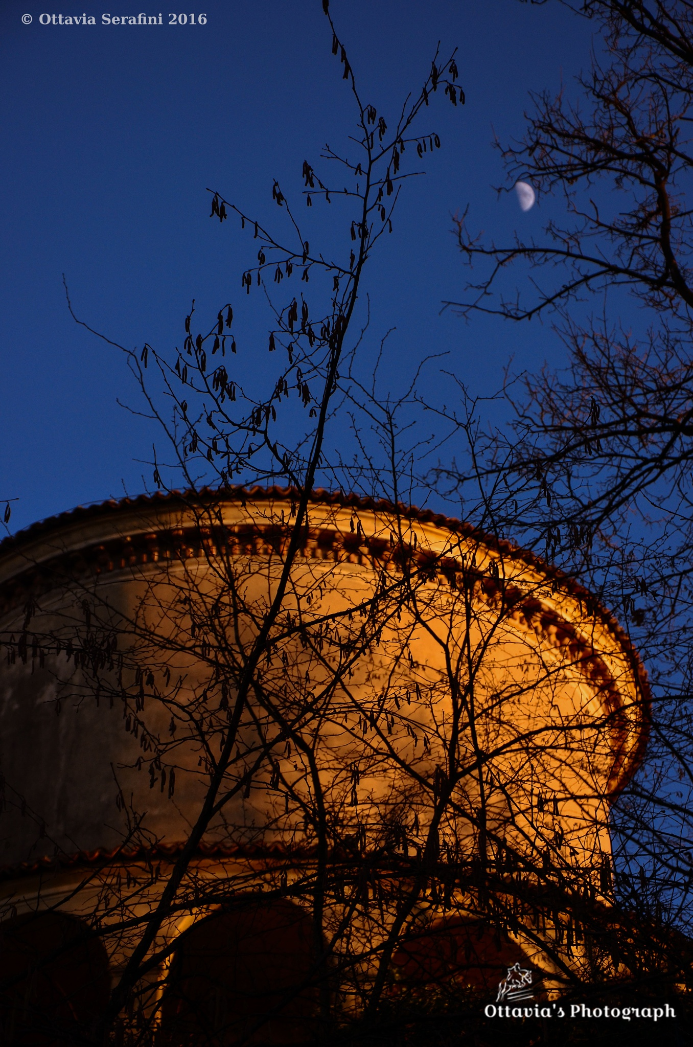 You smile to the moon... by Ottavia's Photograph