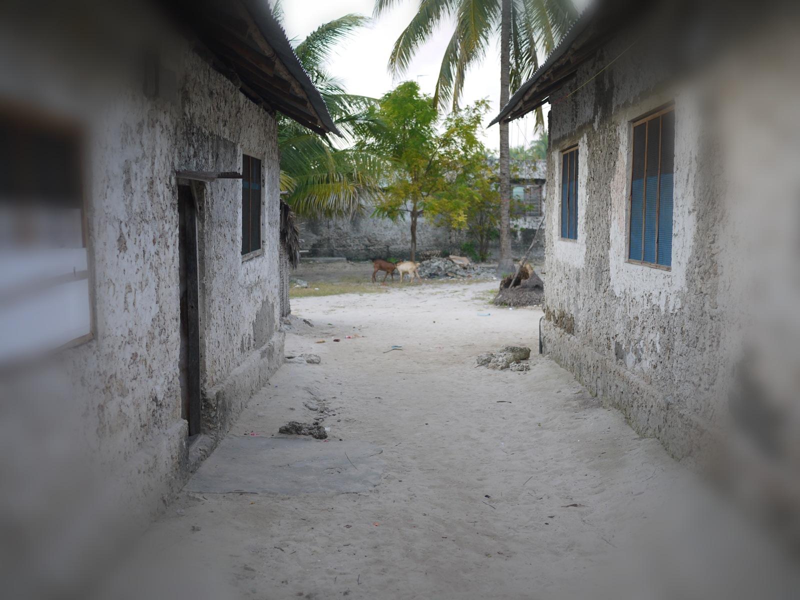 Jambiani Village by shorty123