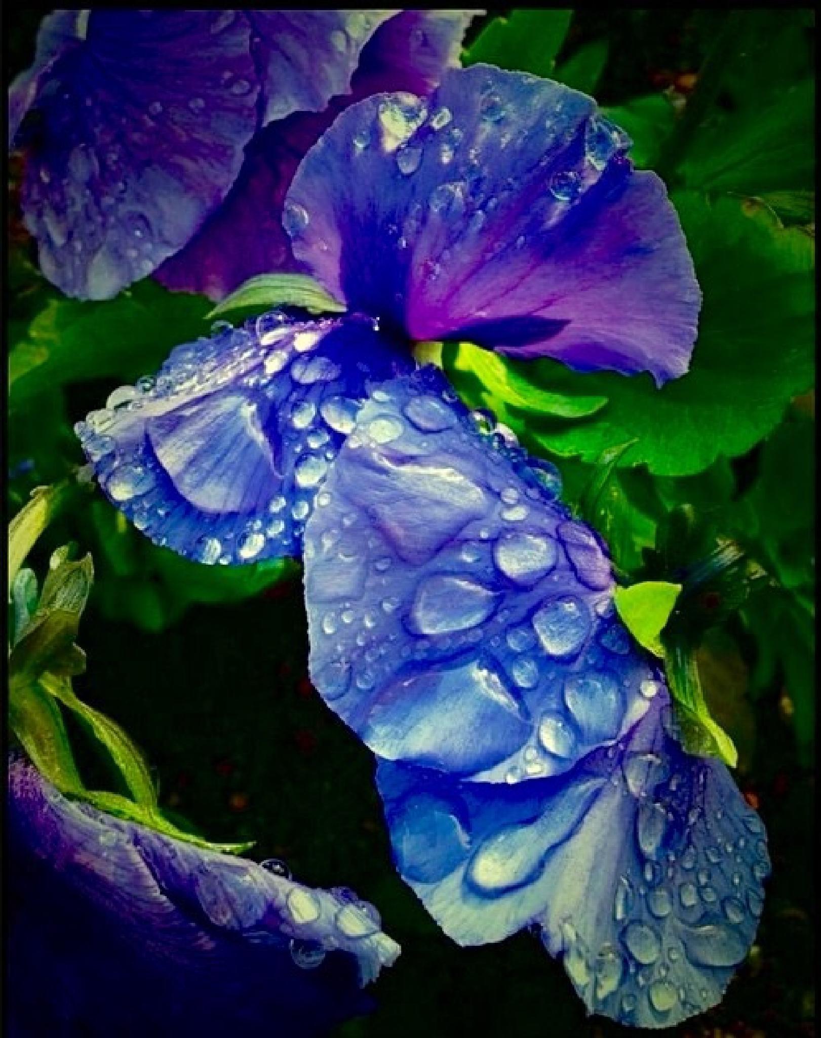 Rain flowers by MlleVivien