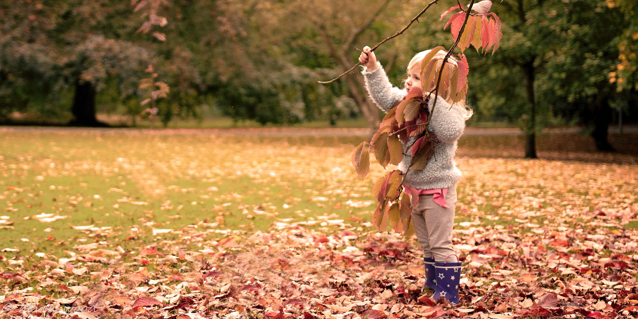 The joy of Autumn. by kevin.wood.359126