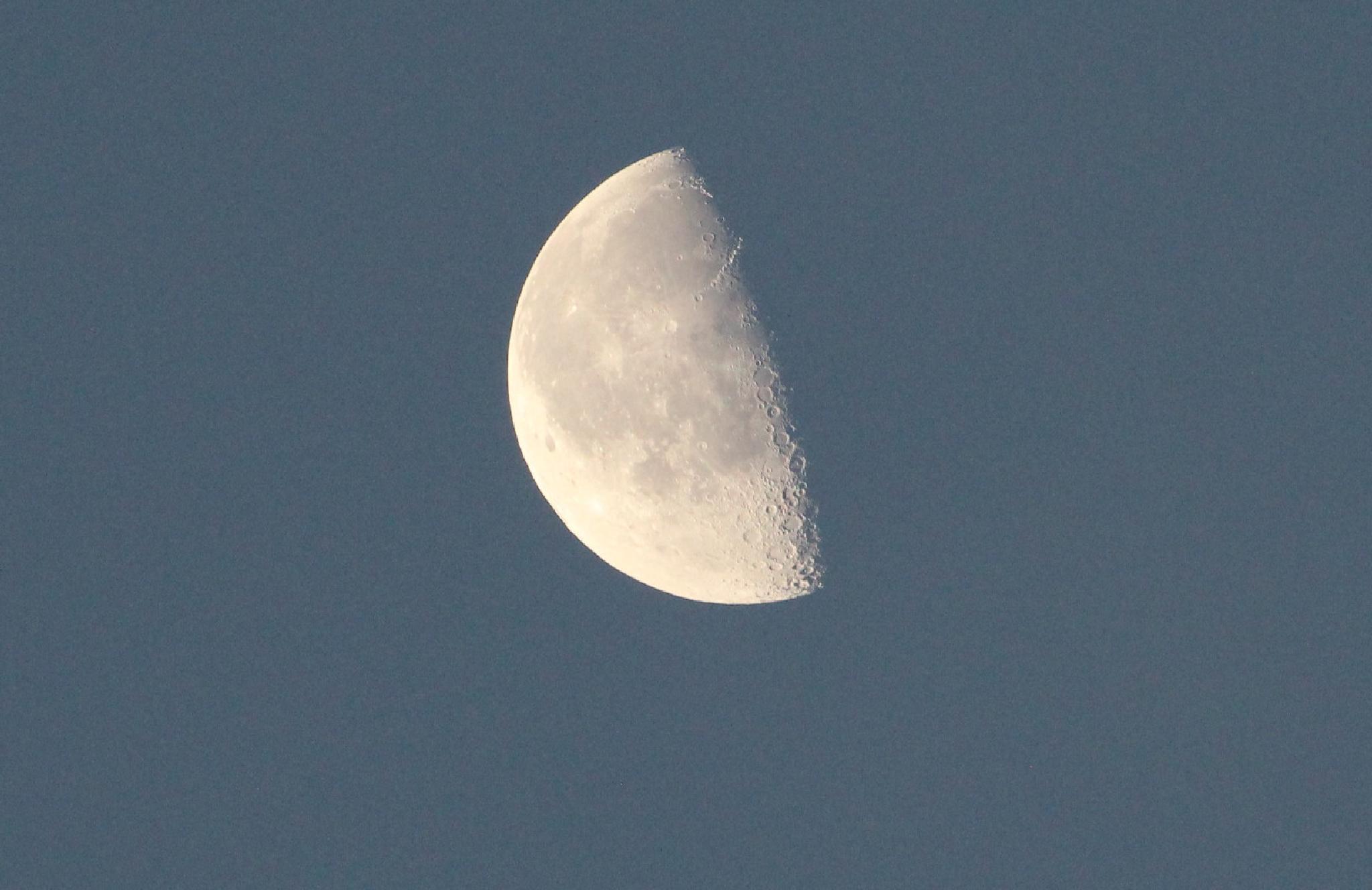 1/2 moon  by michael.grogan.969