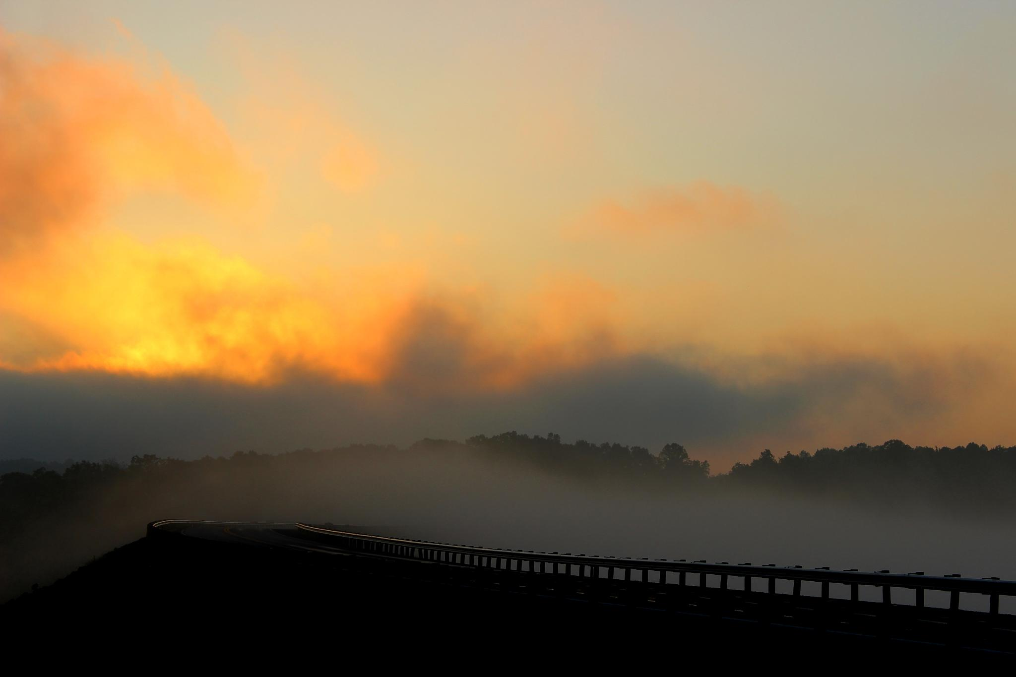 the fog by terry.herndon.1