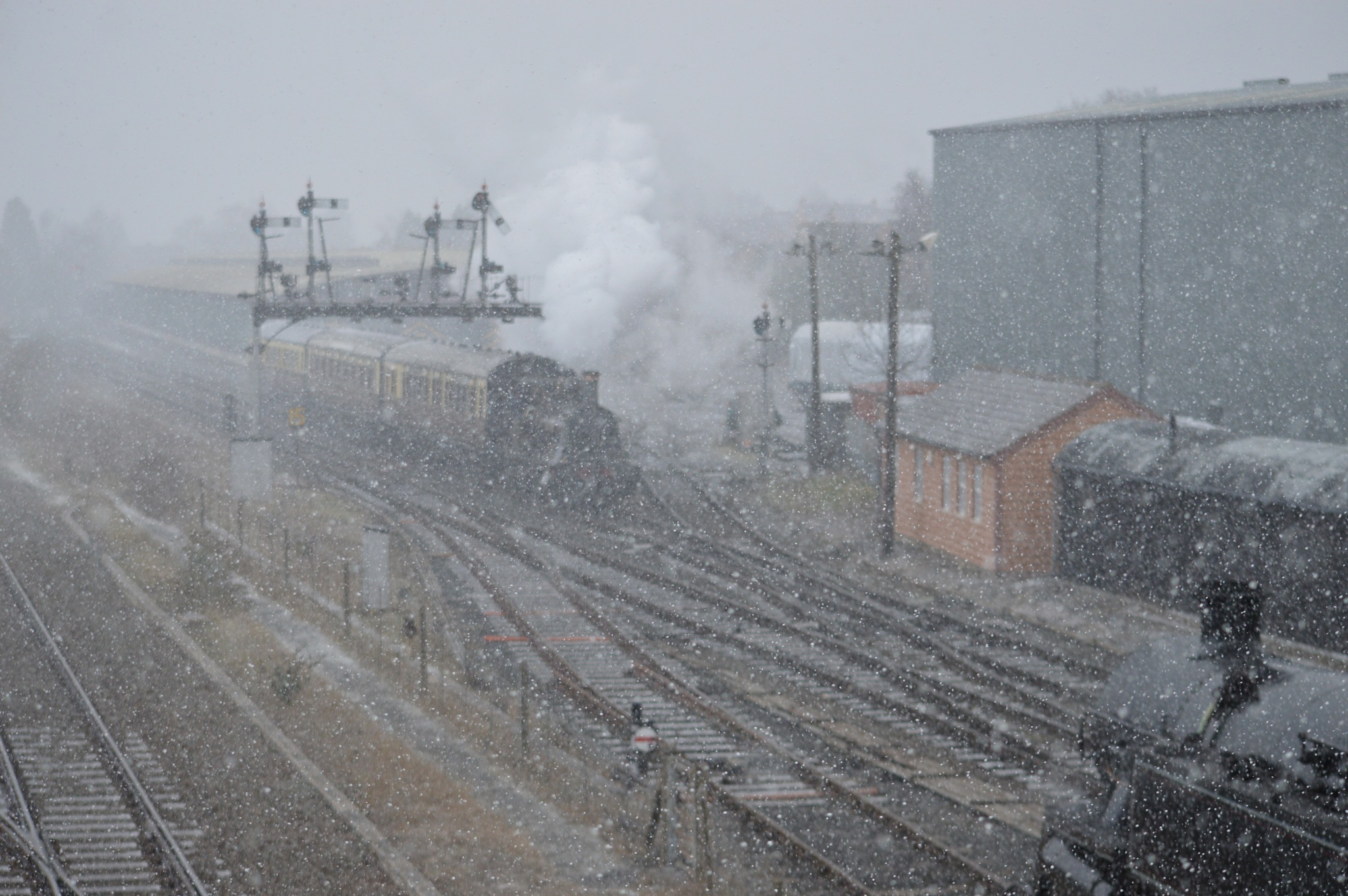 trains in snow storm by adrian.williams.58323