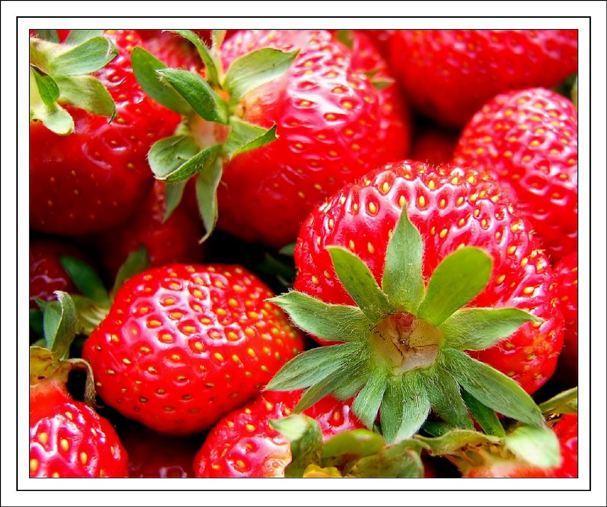 Strawberries  by johannes.steingrimsson