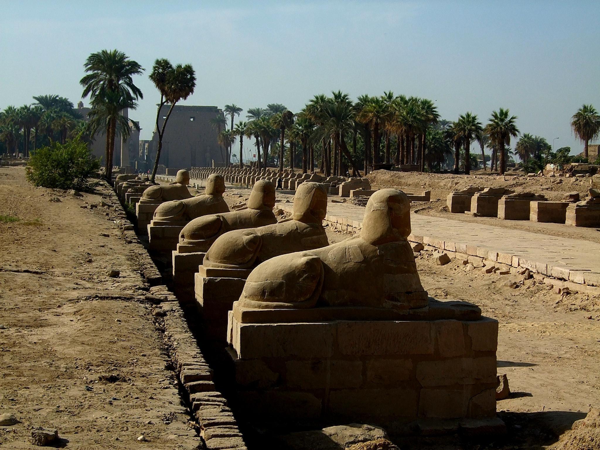 Luxor Egypt. by johannes.steingrimsson