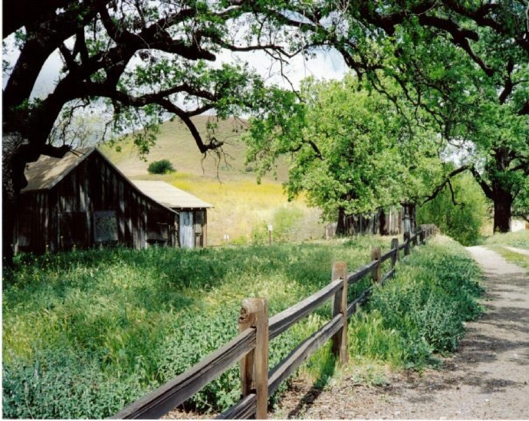 The ranch house by fredda.j.thomas