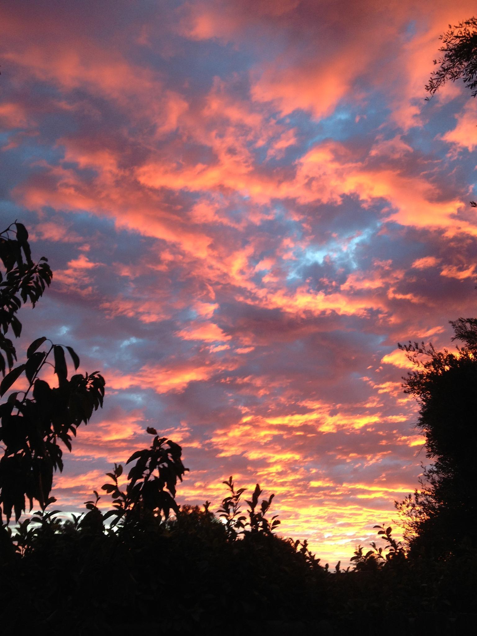 Sunset by fredda.j.thomas