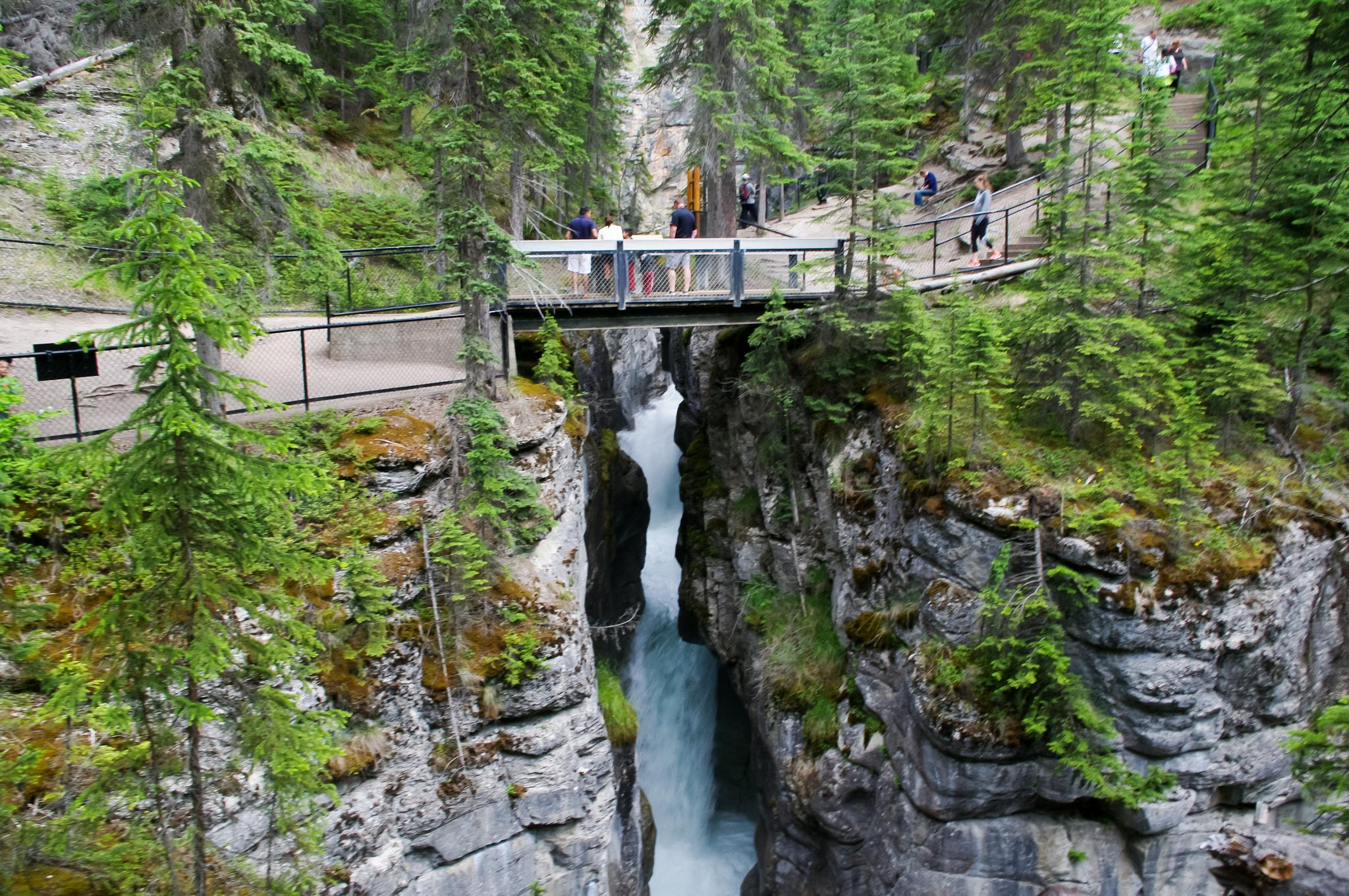 Bridge over Maligne Canyon by paul.d.forges