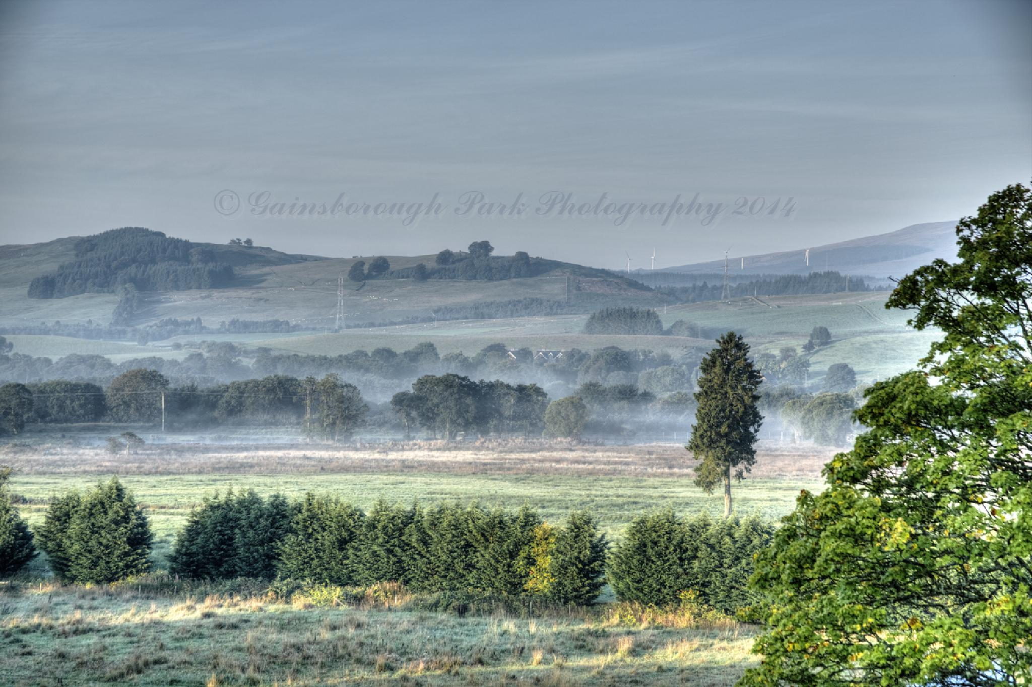 Morning Mist at Moffat by Gainsborough Park Photography