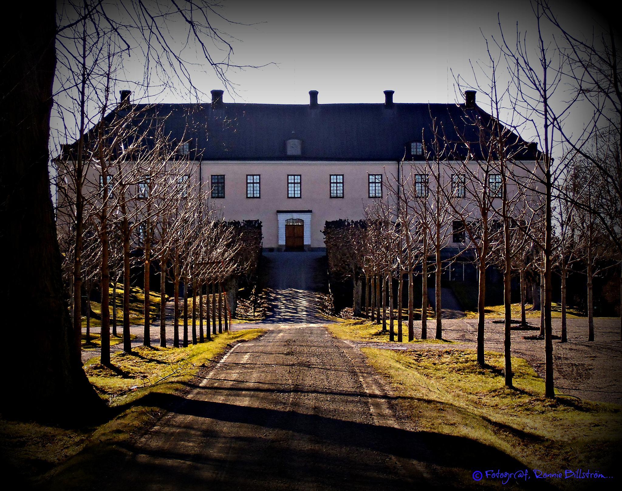 Grönsöö castle by ronnie.billstrom