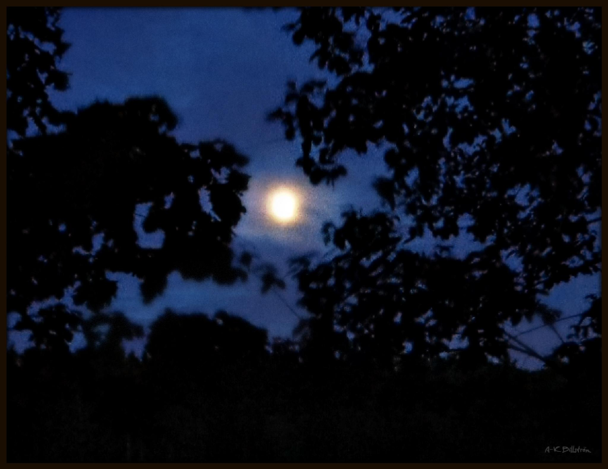 Mothers Day Moon May 2015 by A-K Billström