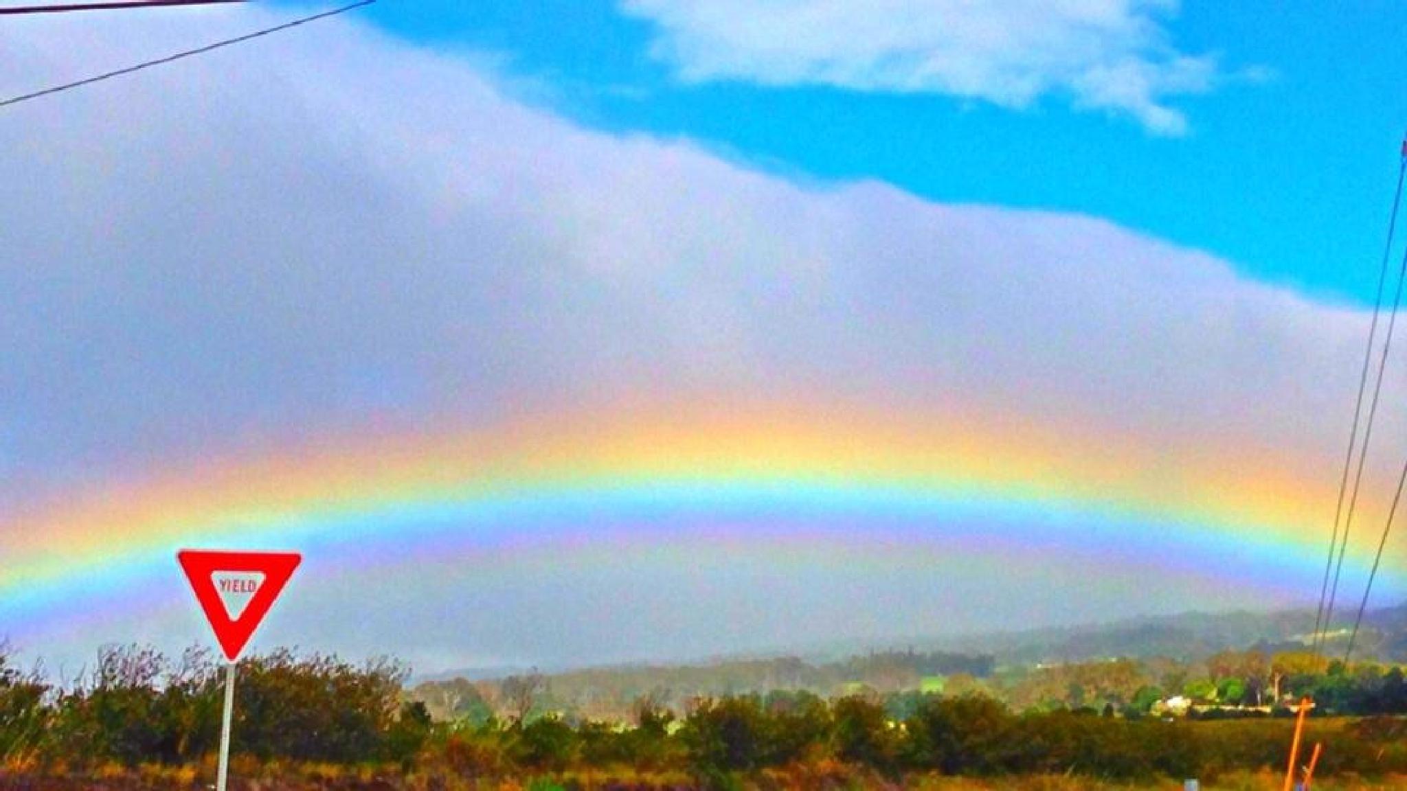 Yield to Rainbowes by MAUI UNDERGROUND