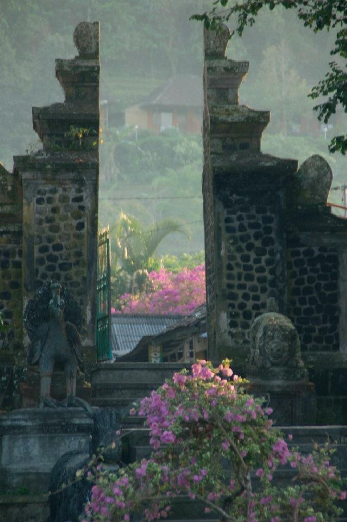 Bali Bliss by alana.cini