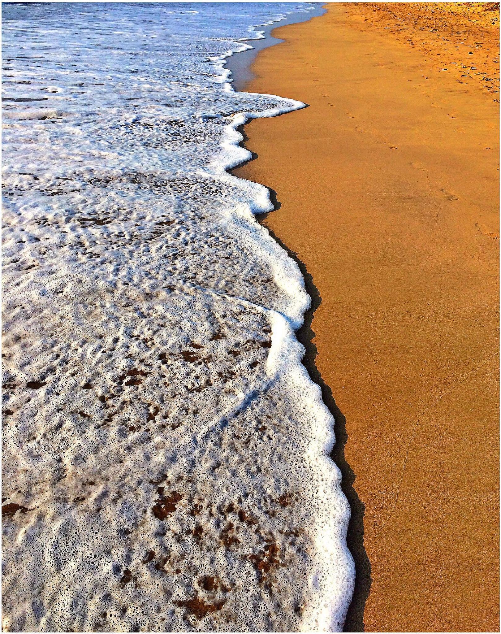 Ocean Meets Land by alana.cini