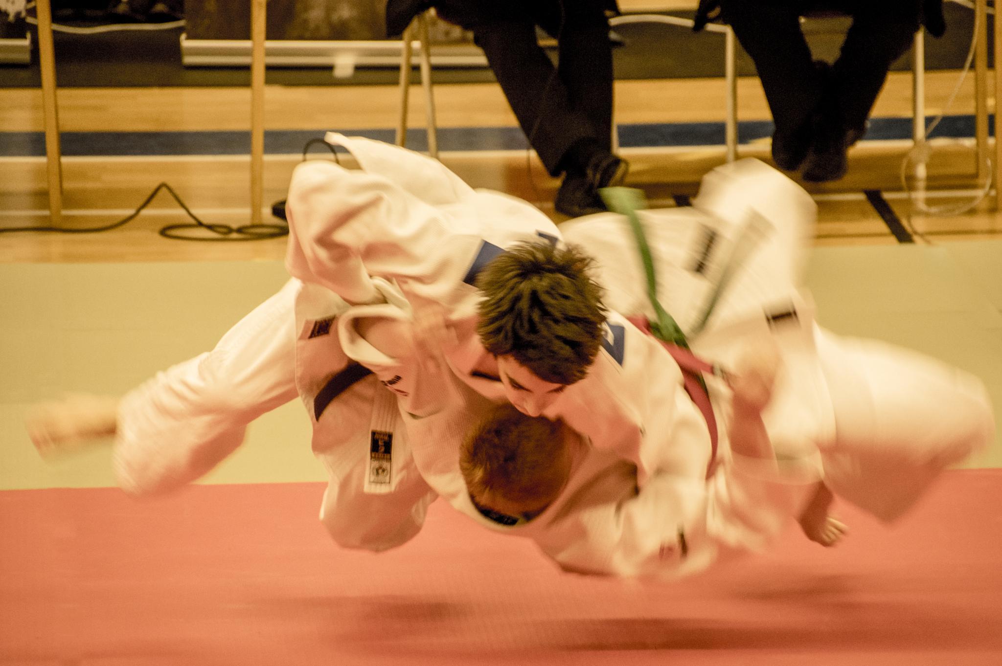 judo airborne by gorber
