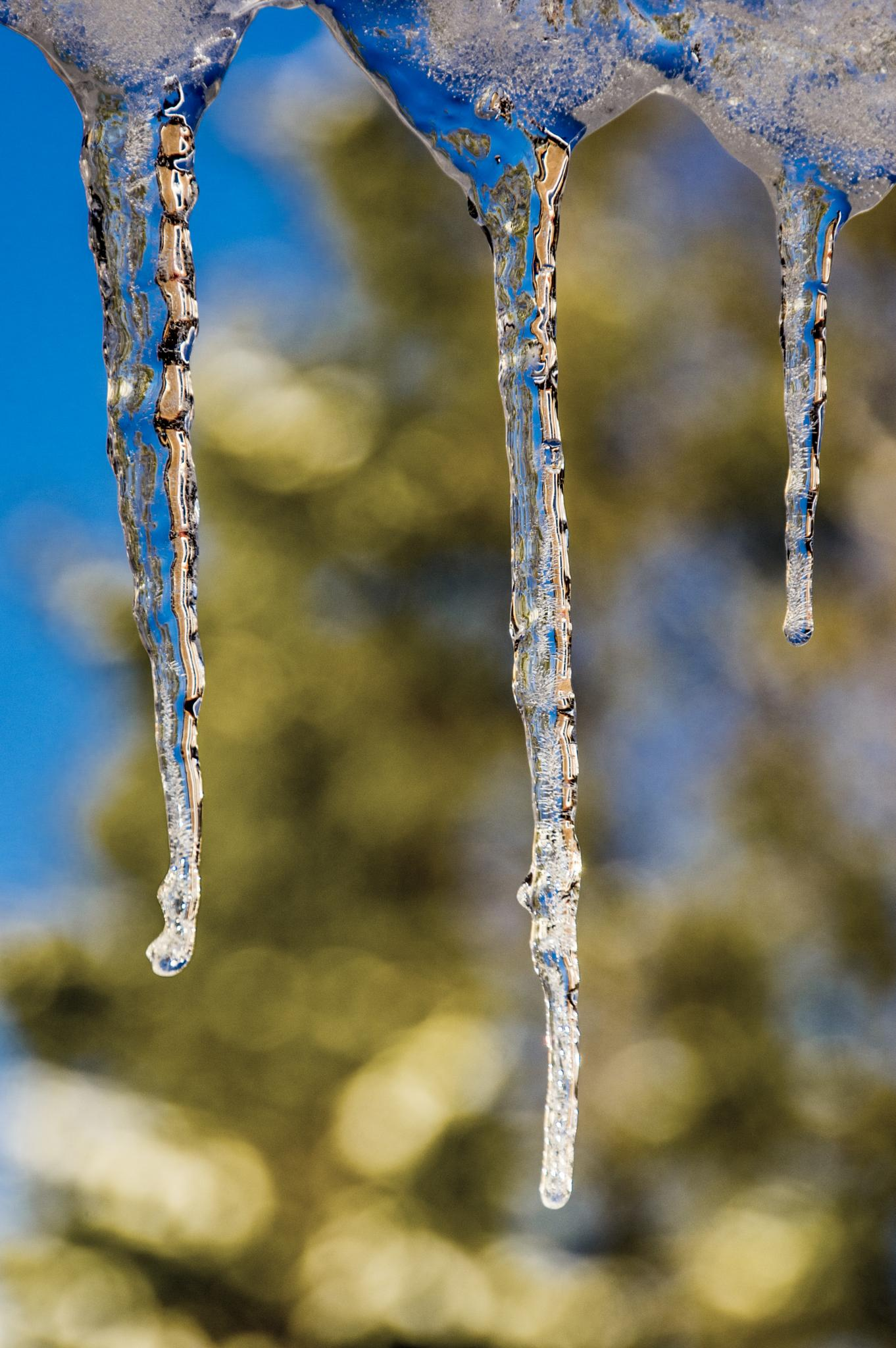 ice droplets by gorber