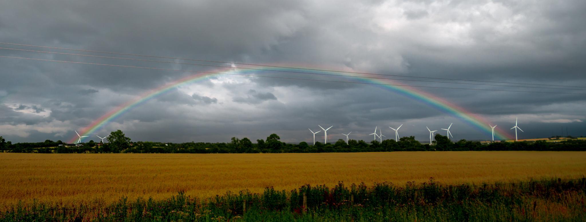 rainbow by TonBoelaars