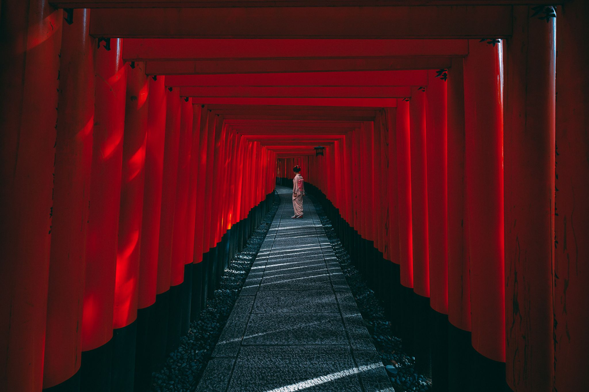 The Red Pathway by Peter Stewart
