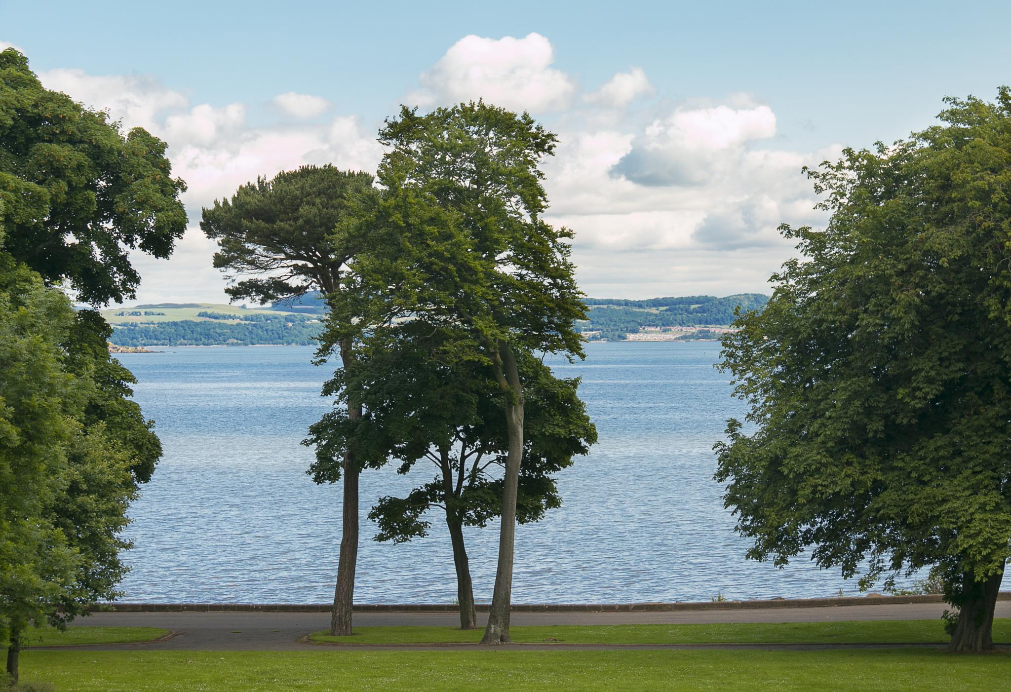 Photo in Landscape #trees #sea #scotland #edinburgh