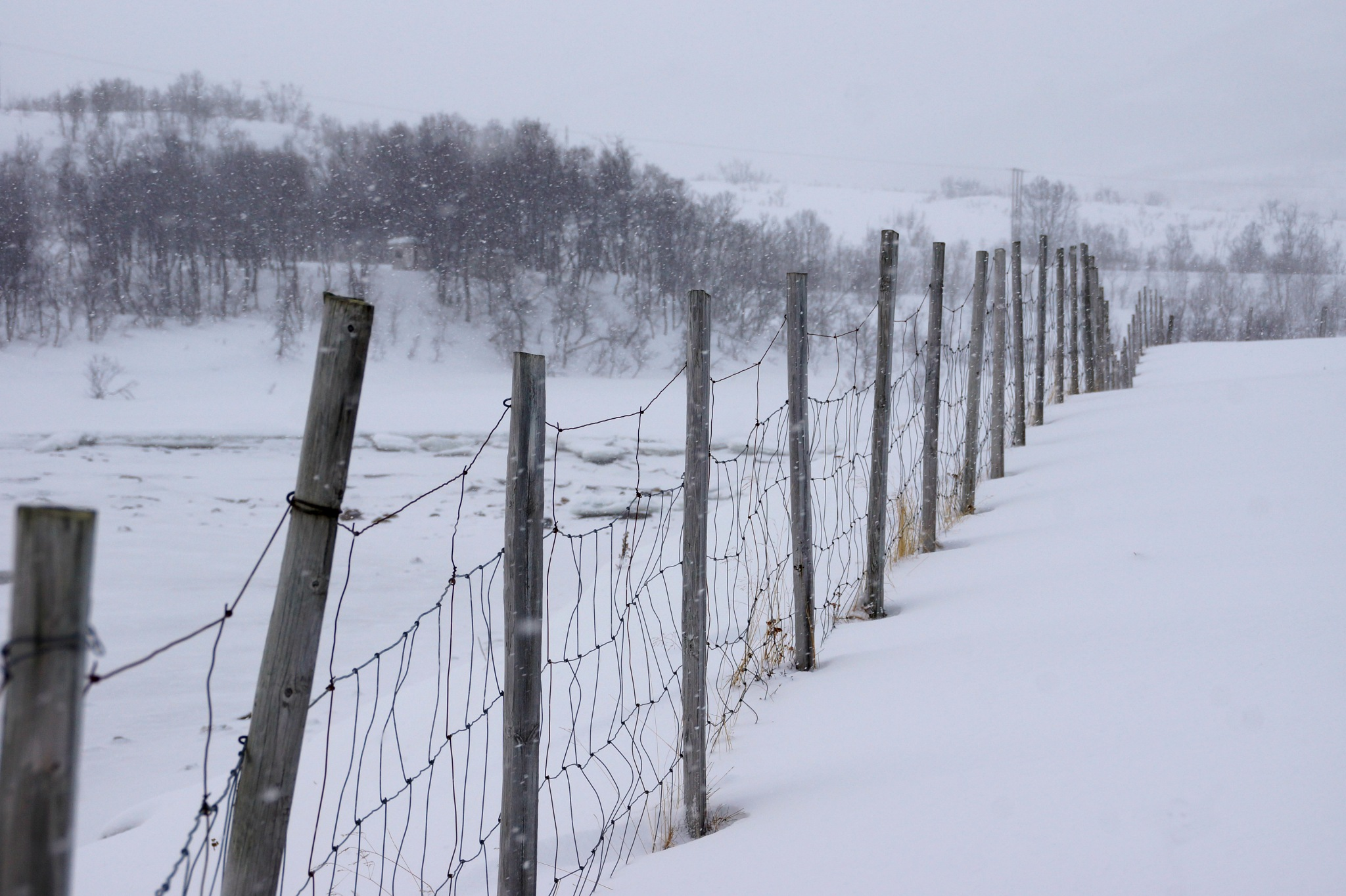 Fence in the snow by joeilert