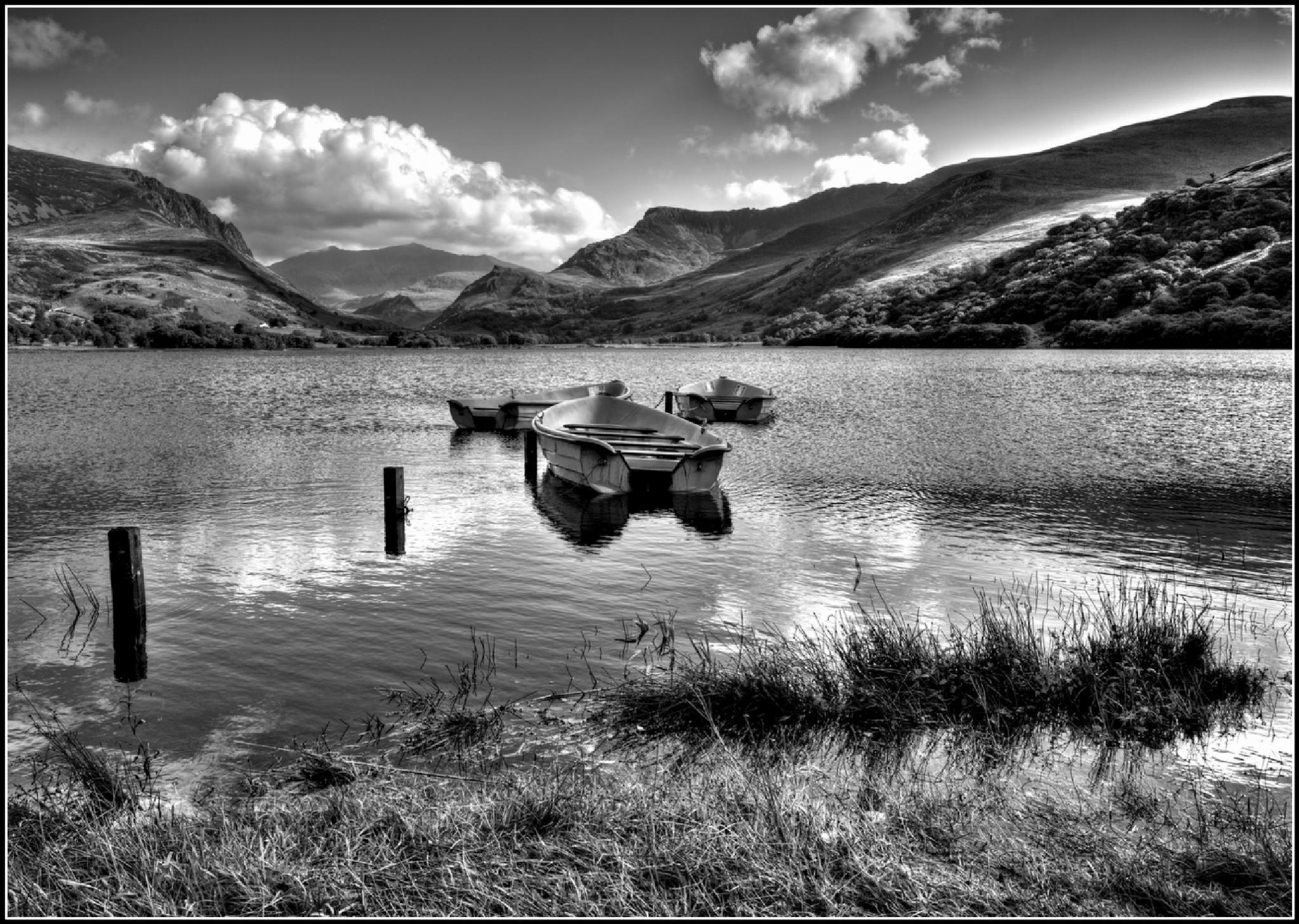 Llyn Nantlle Uchaf by Anthony Barnett
