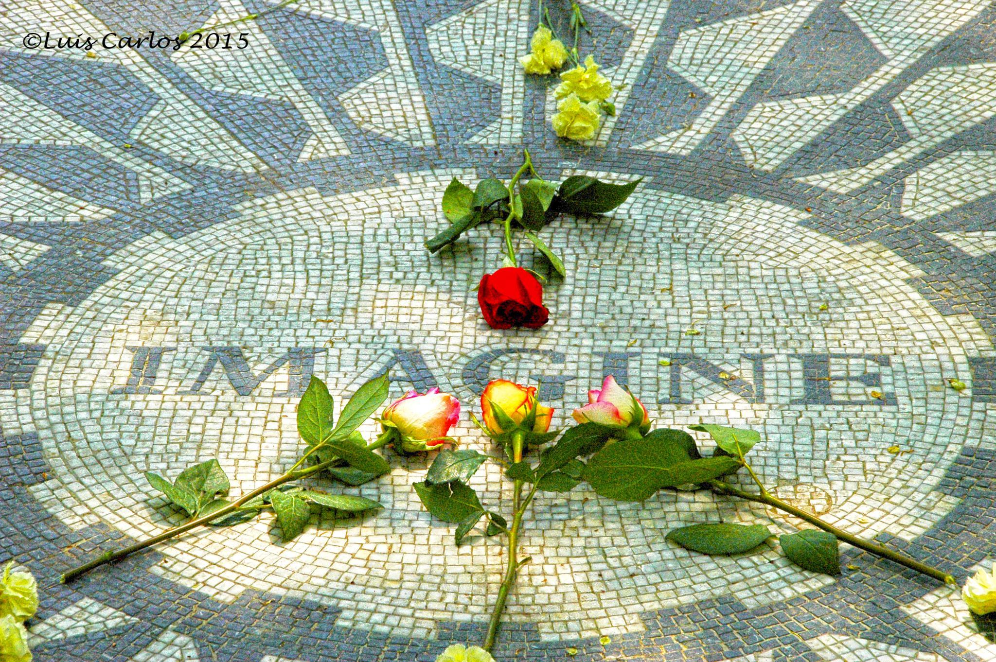 In Memoriam by Luicar