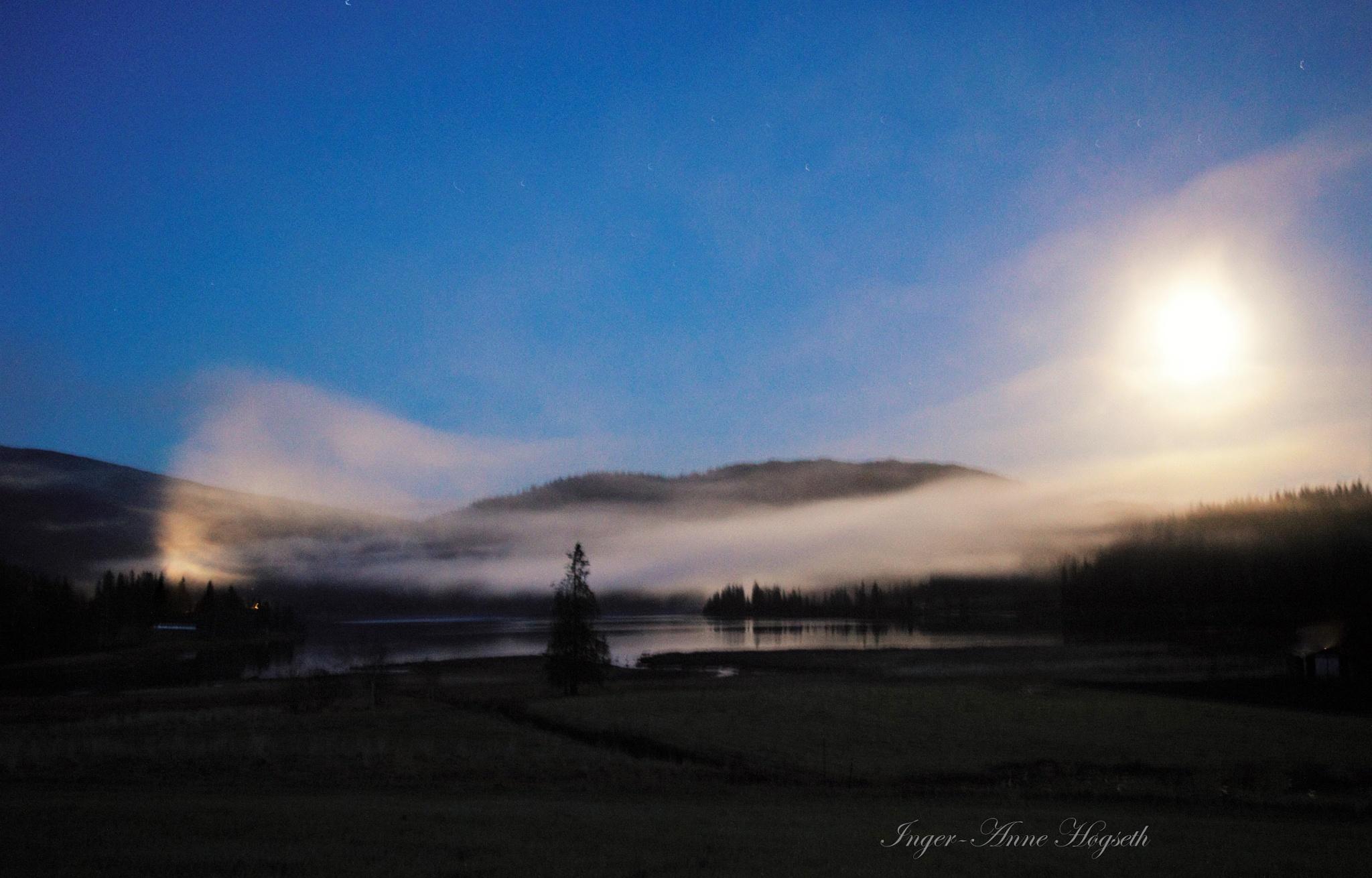 Moonlight  by IngerAnneHogseth