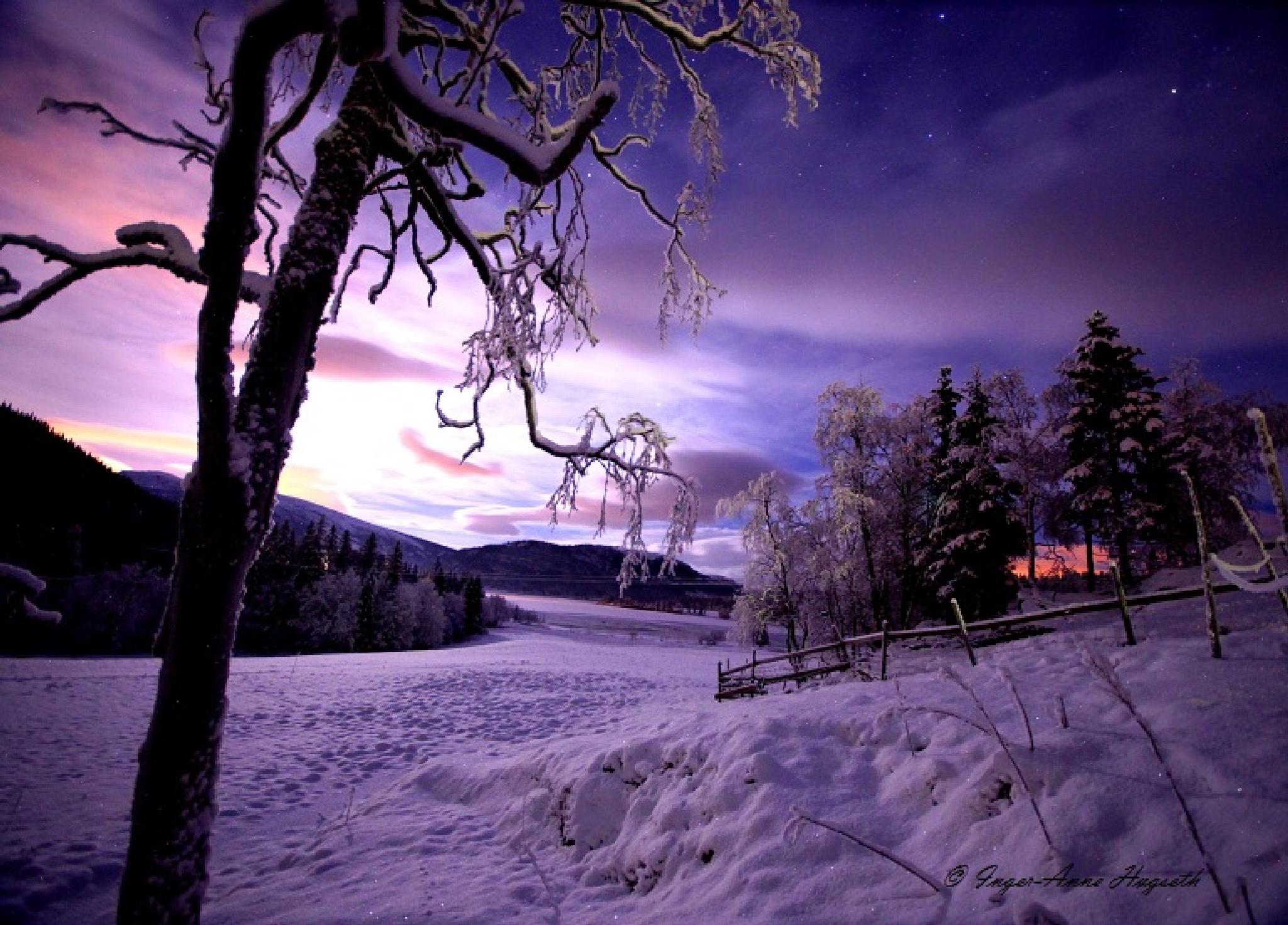 Decemberlight by IngerAnneHogseth