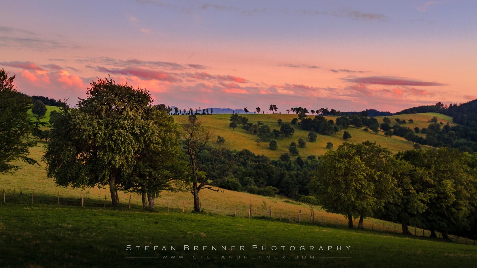 My Dreamland by Stefan Brenner