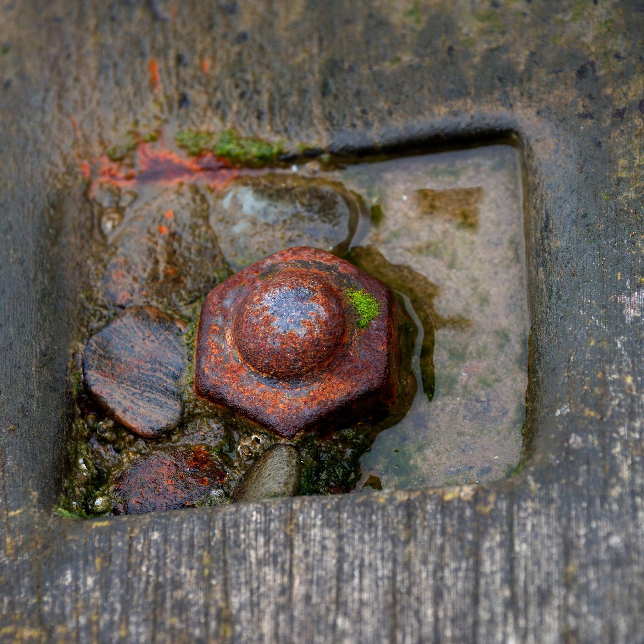 Rusty Bolt In Sea Breaker - Colour by paul.hosker