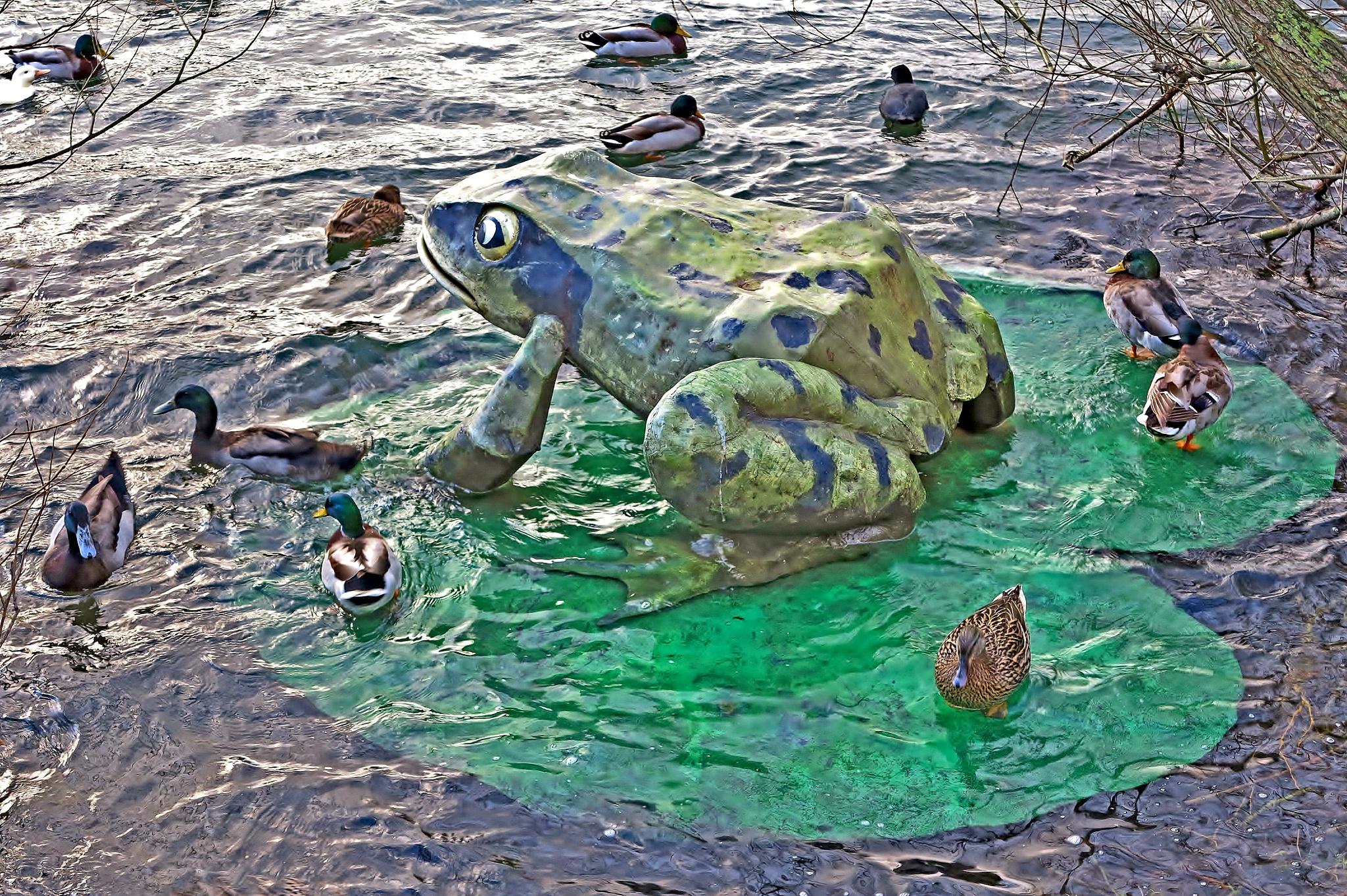 Frog & Ducks - Colour by paul.hosker
