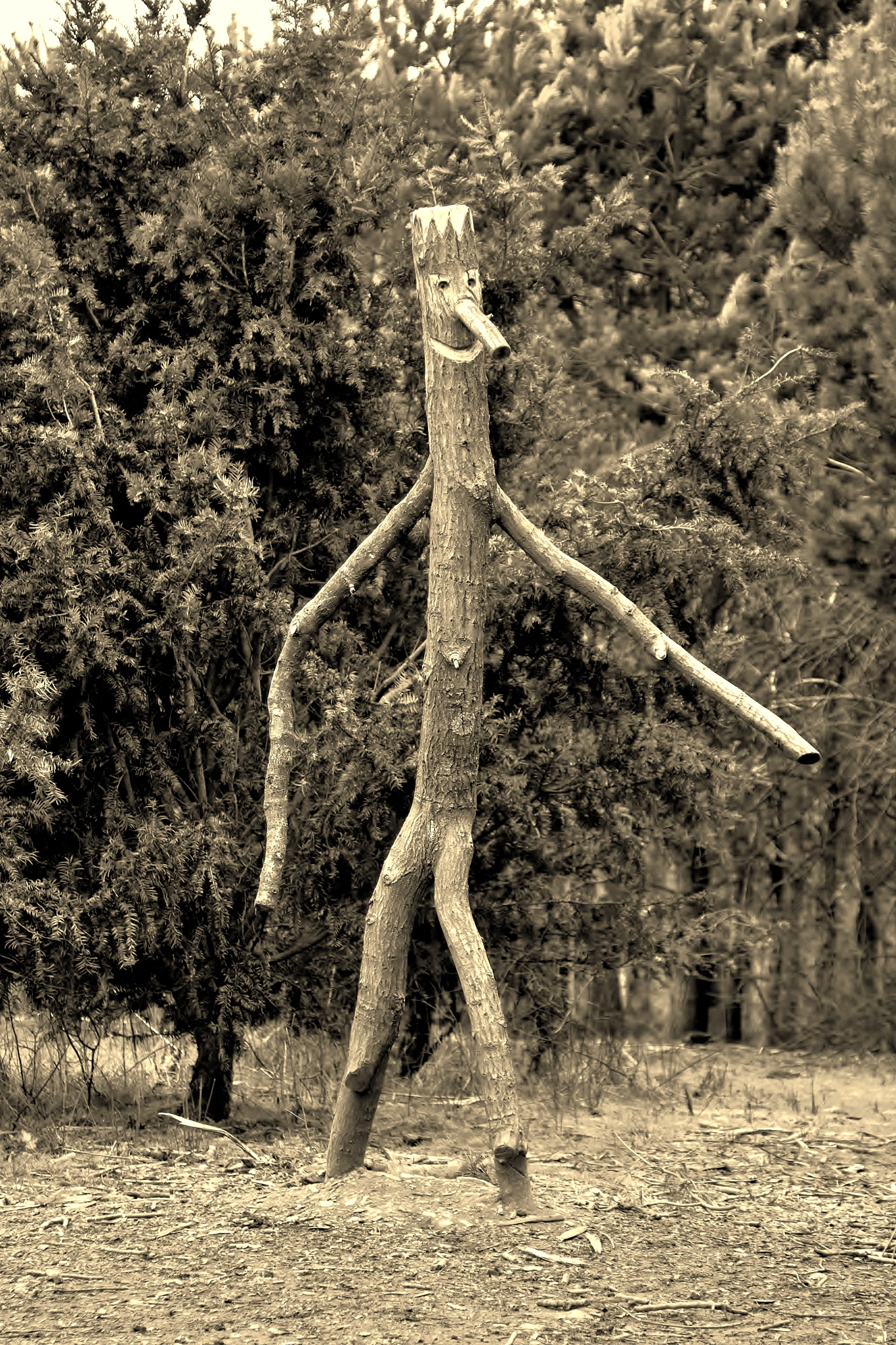 The Stick Man Trail - Delamere Forest - Sepia by paul.hosker