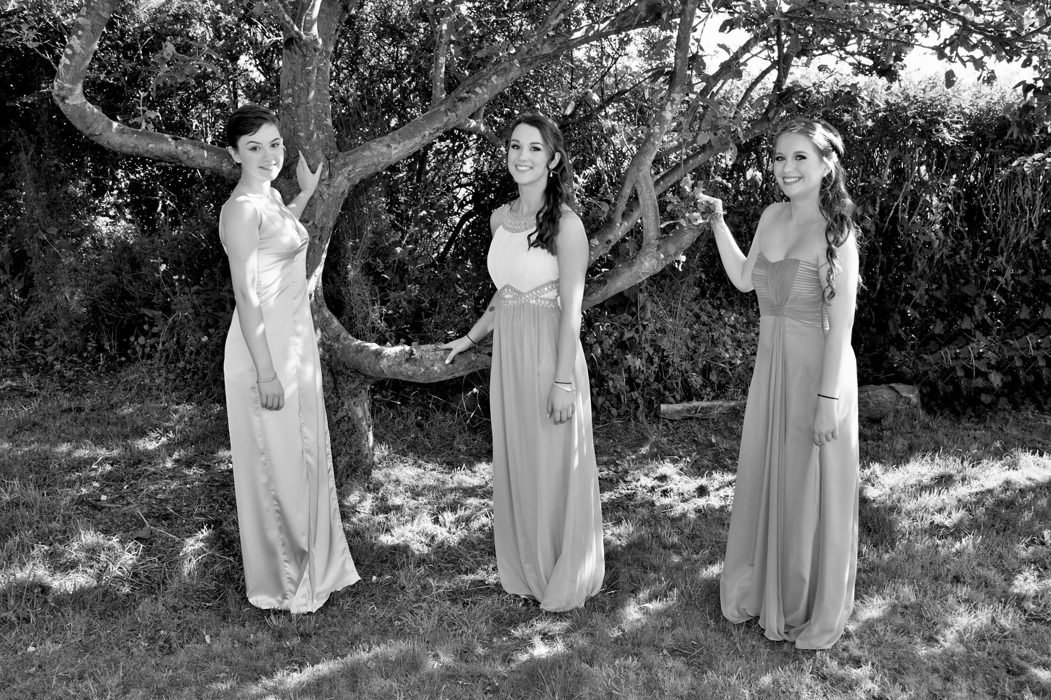 Prom - Three Beside A Tree - Monochrome by paul.hosker