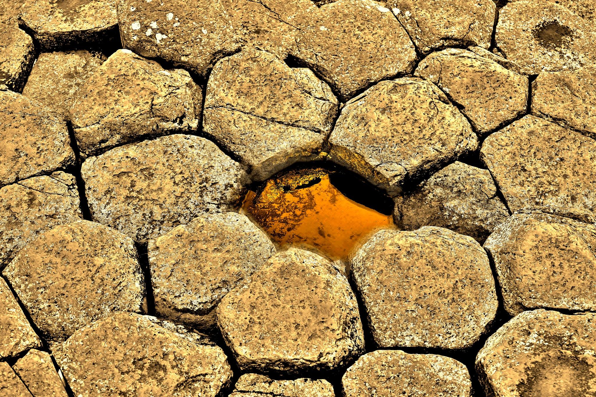 Rocks & Pool - Flower Like - Giants Causeway by paul.hosker