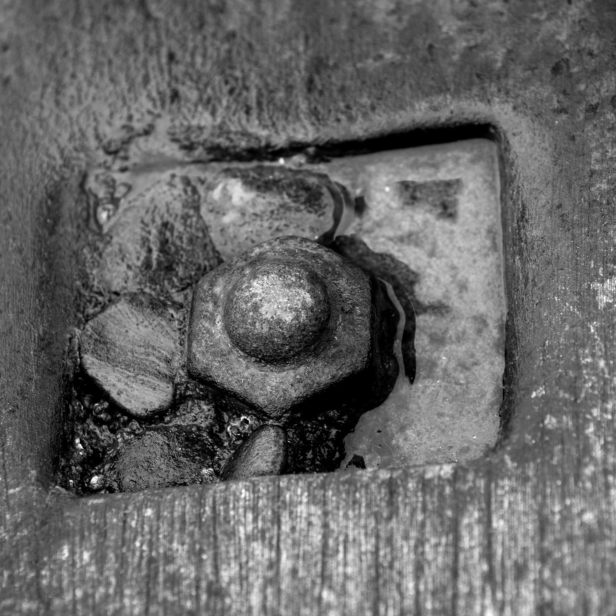 Rusty Bolt In Sea Breaker - Monochrome by paul.hosker