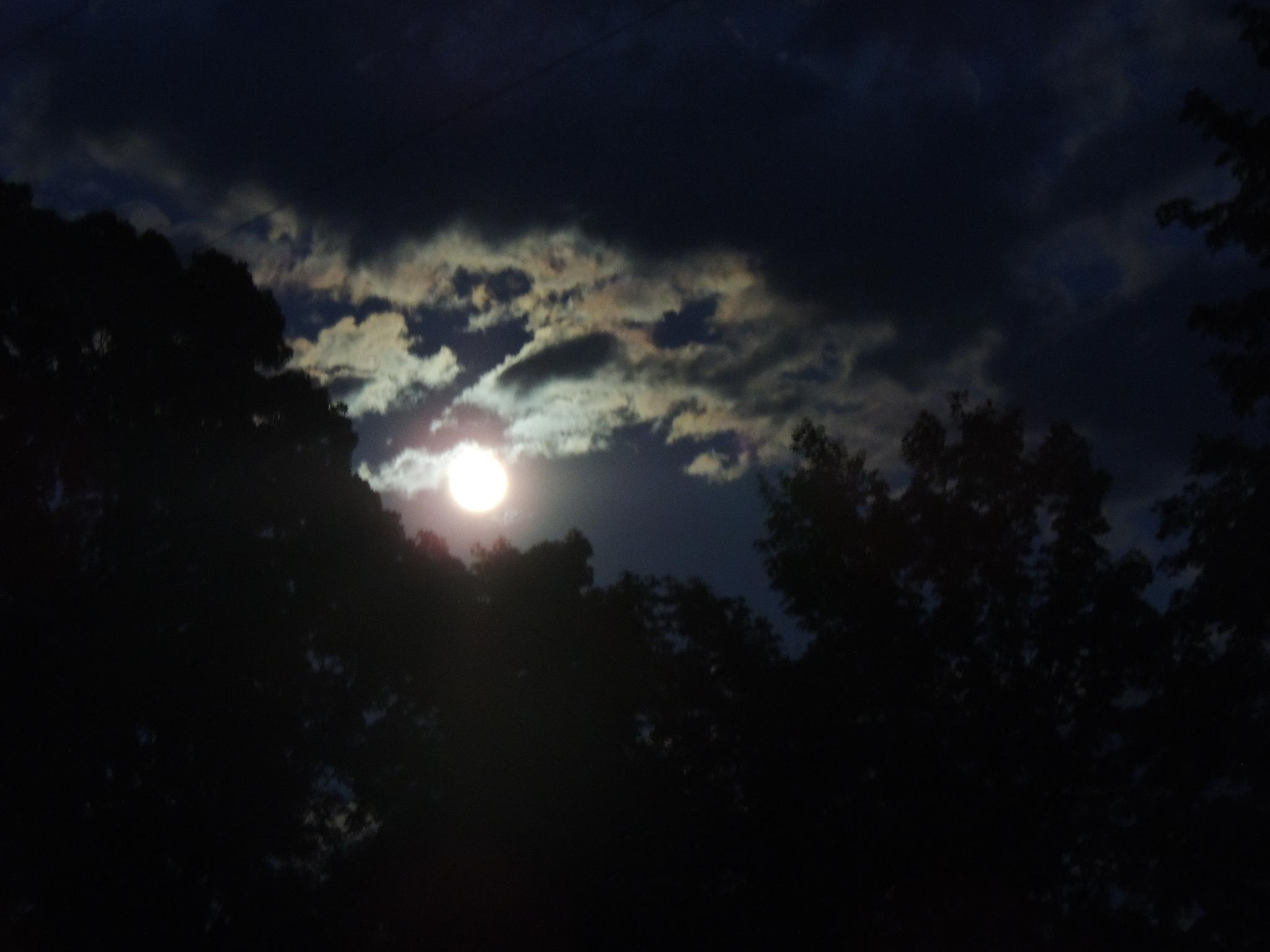 blue moon by robbin.allen.nevills