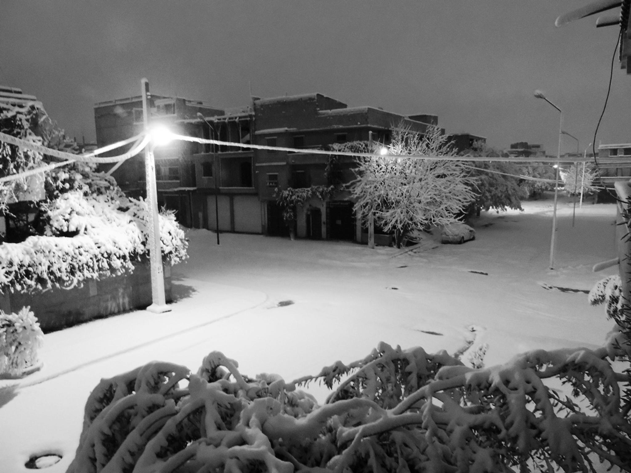 snow by lokmane.yellou