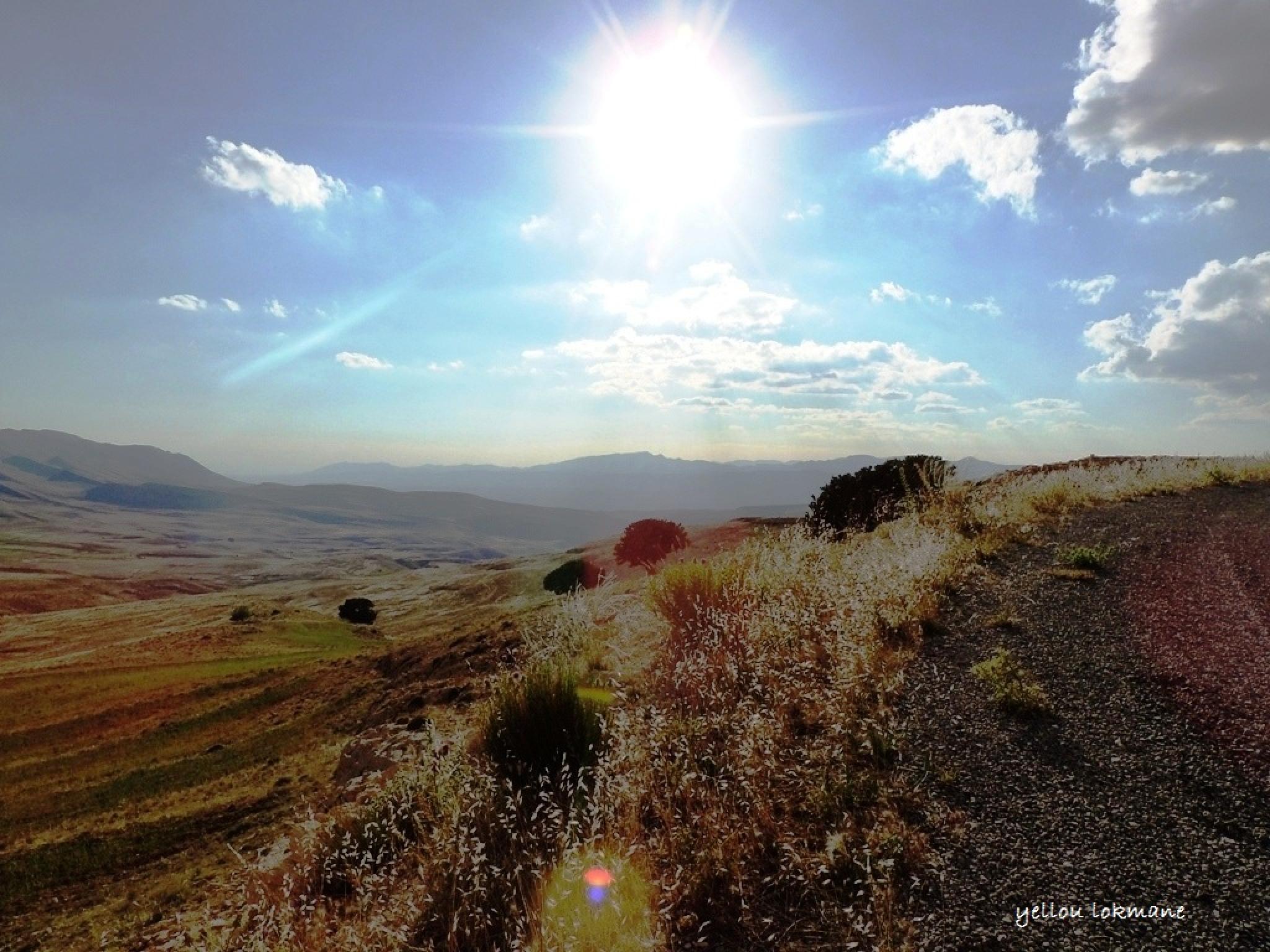 sun by lokmane.yellou