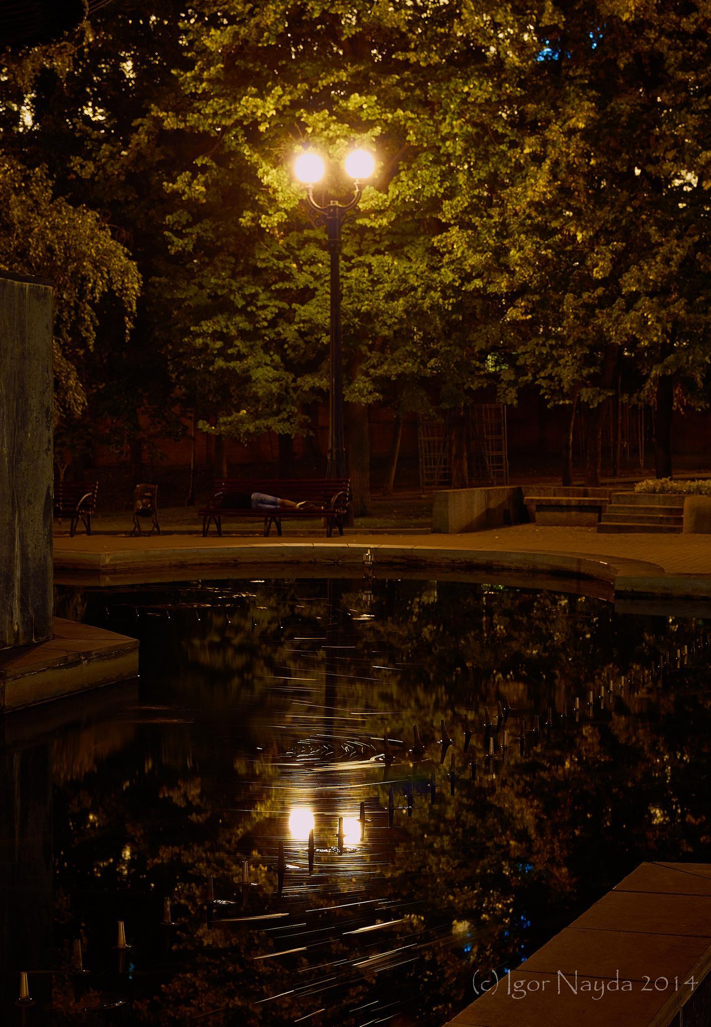 Midsummer Night's Dream by Igor Nayda