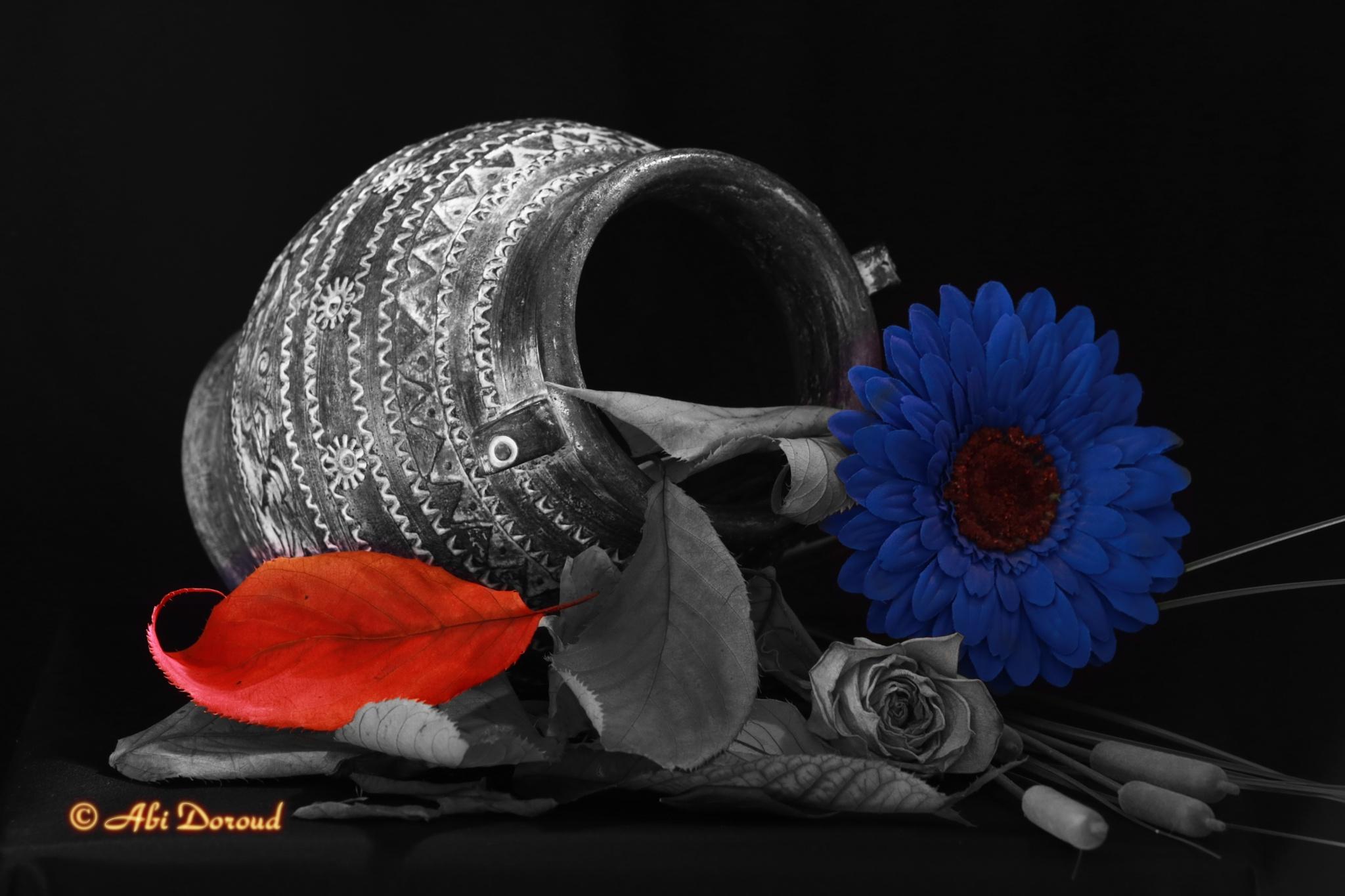 The darkness in November by abi.doroud