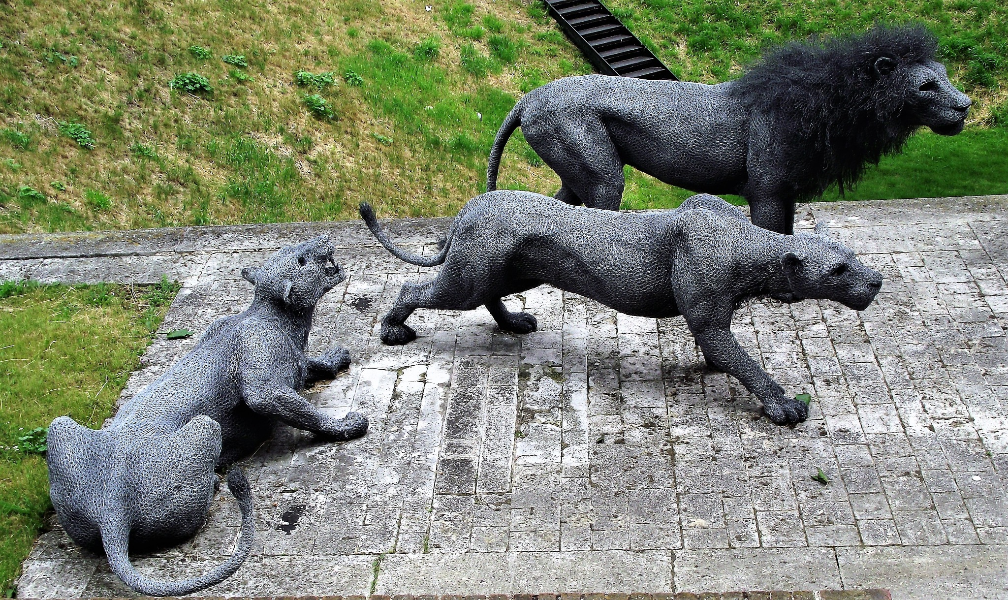 Iron Lions by Giulio