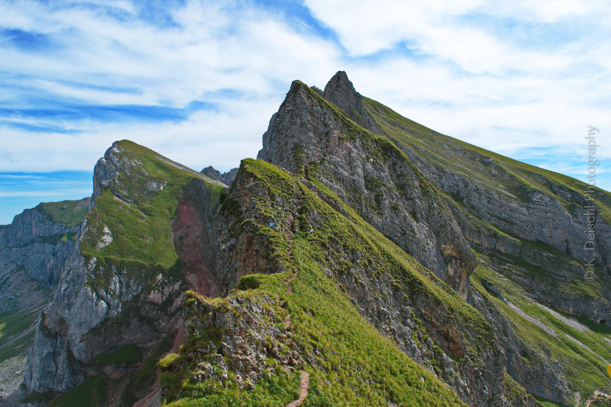 endless path by klaus.deischl