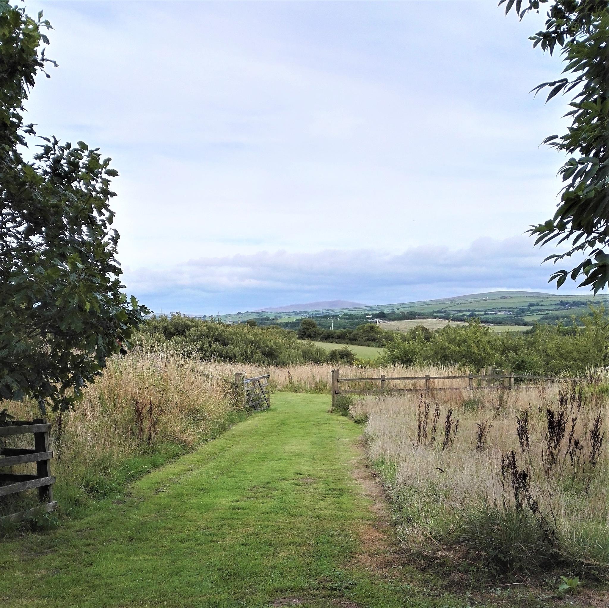 Field View by ............................. Julian.G.Hicks